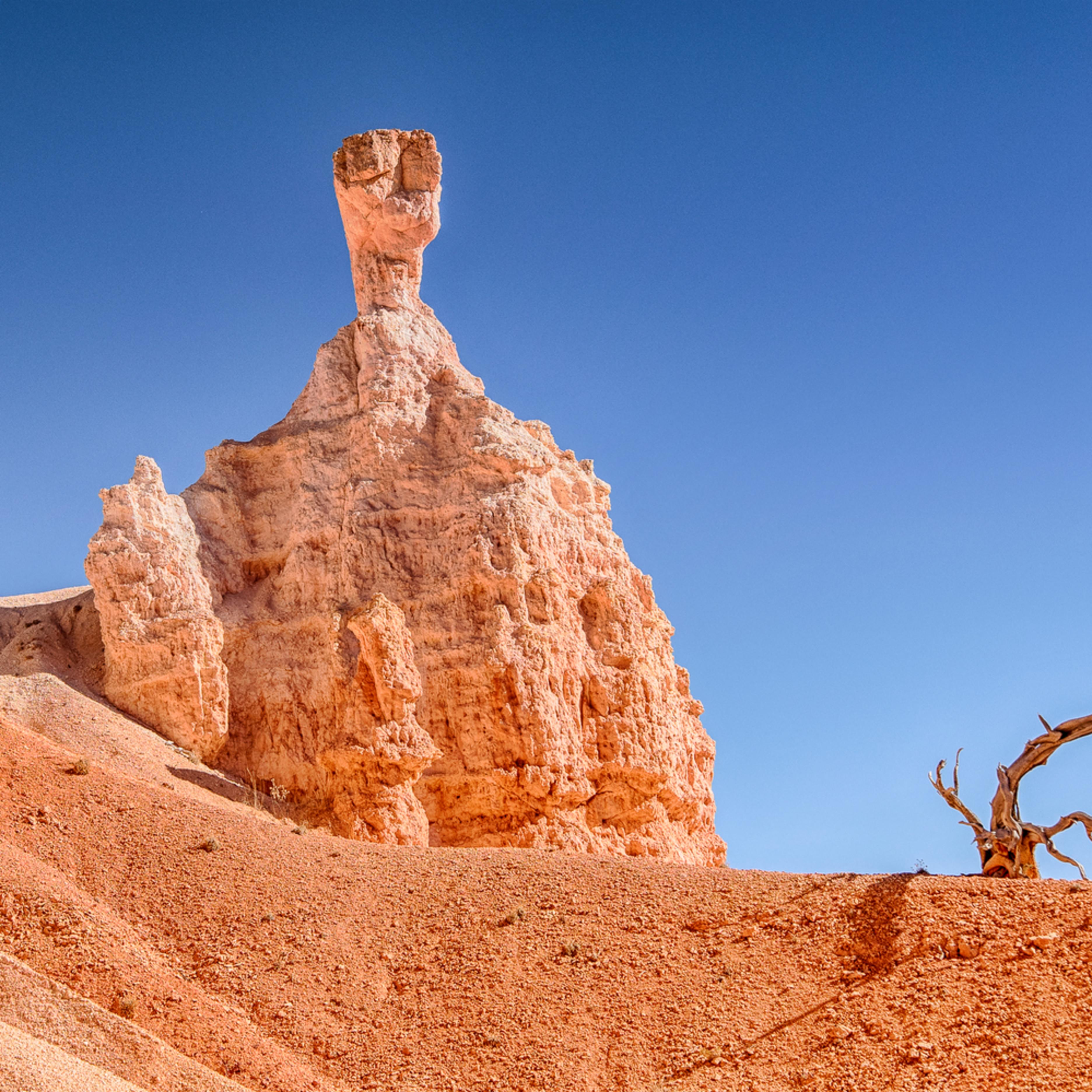 Bryce canyon et wfvqen