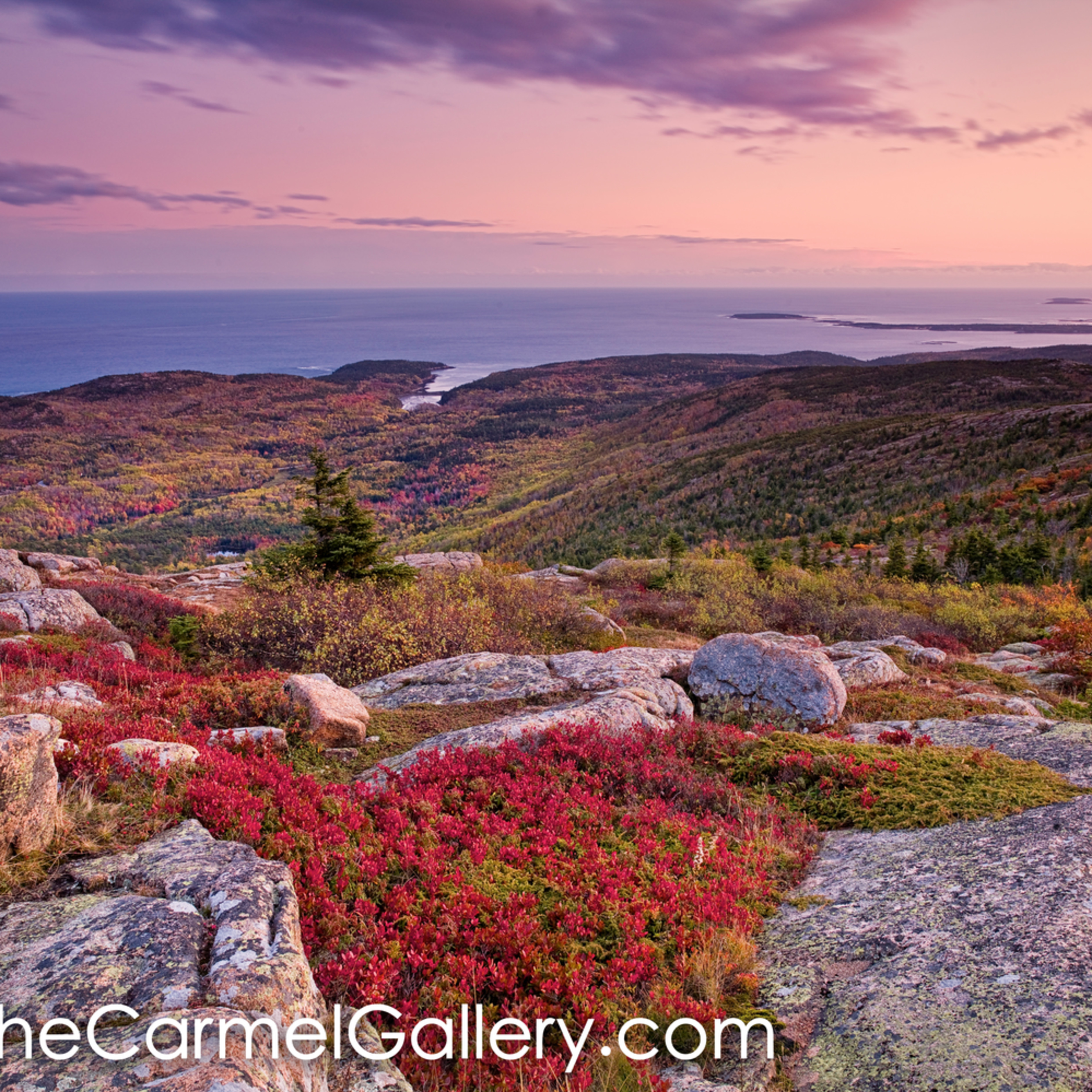 Acadia sunset oy7e4u