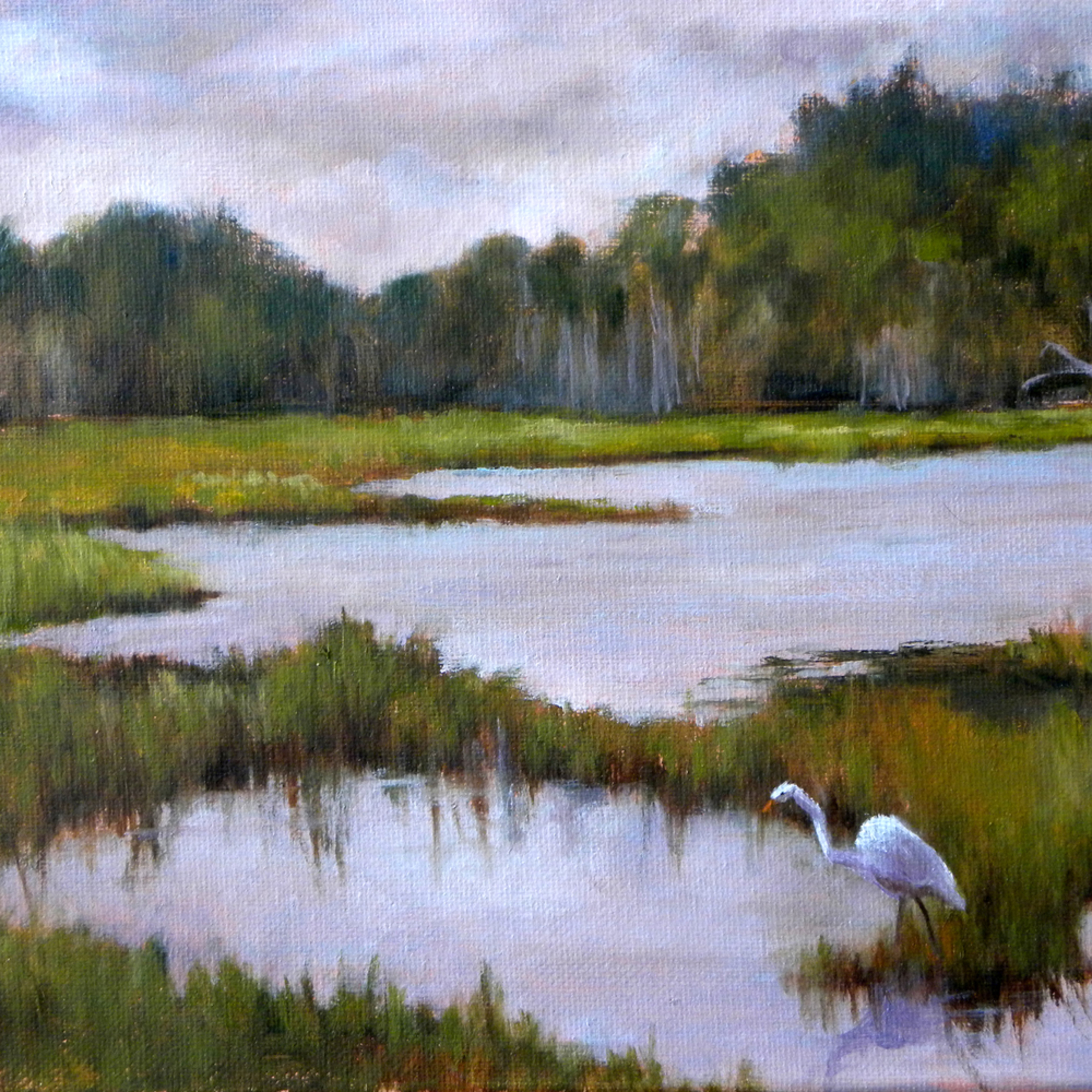 Life in the low country lgugev