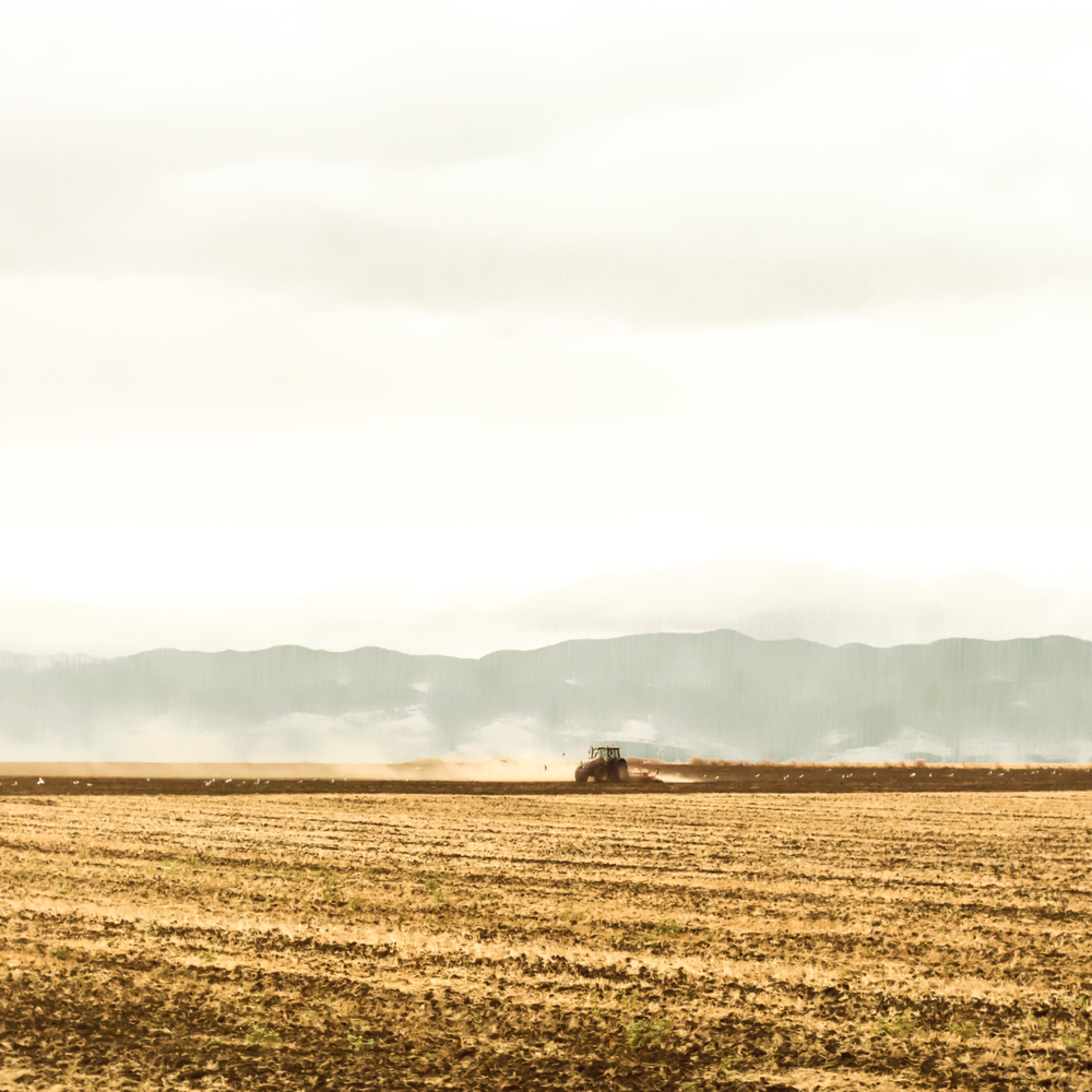 Silent landscape 10 fine art print silvia nikolov wmxjpq