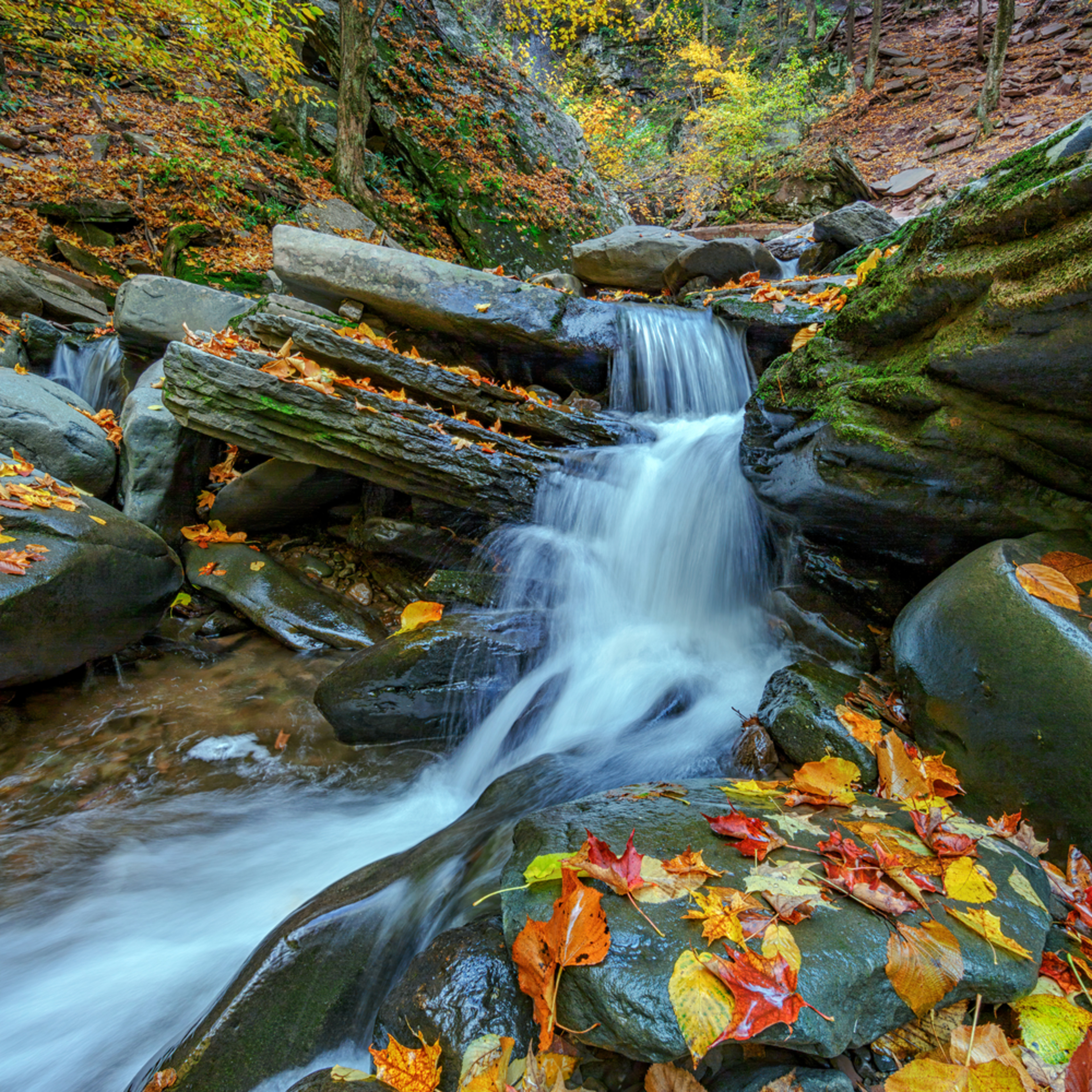 20131015 kaaterskill 0087a uinfwc
