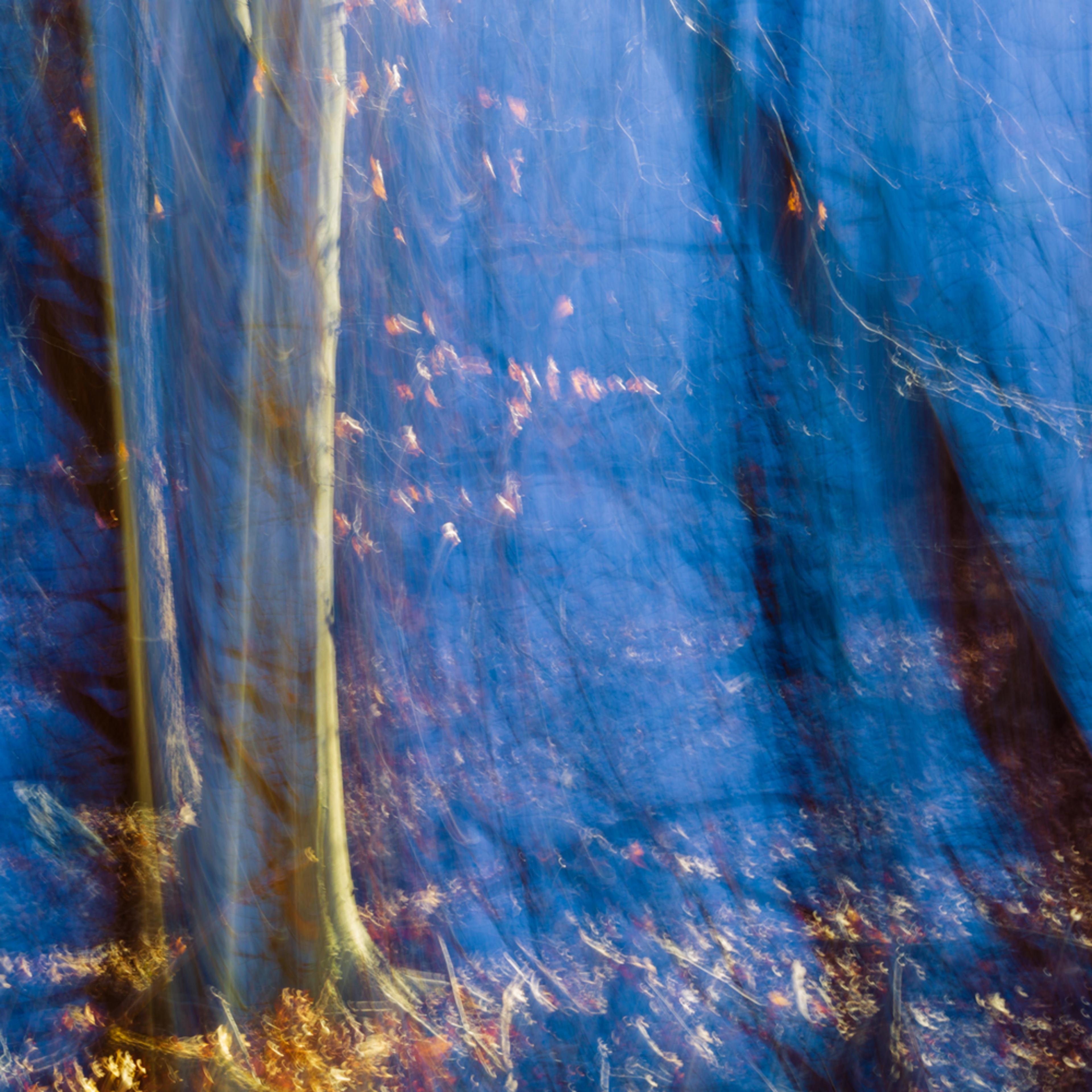 Nature abstract 4630 u7r2te