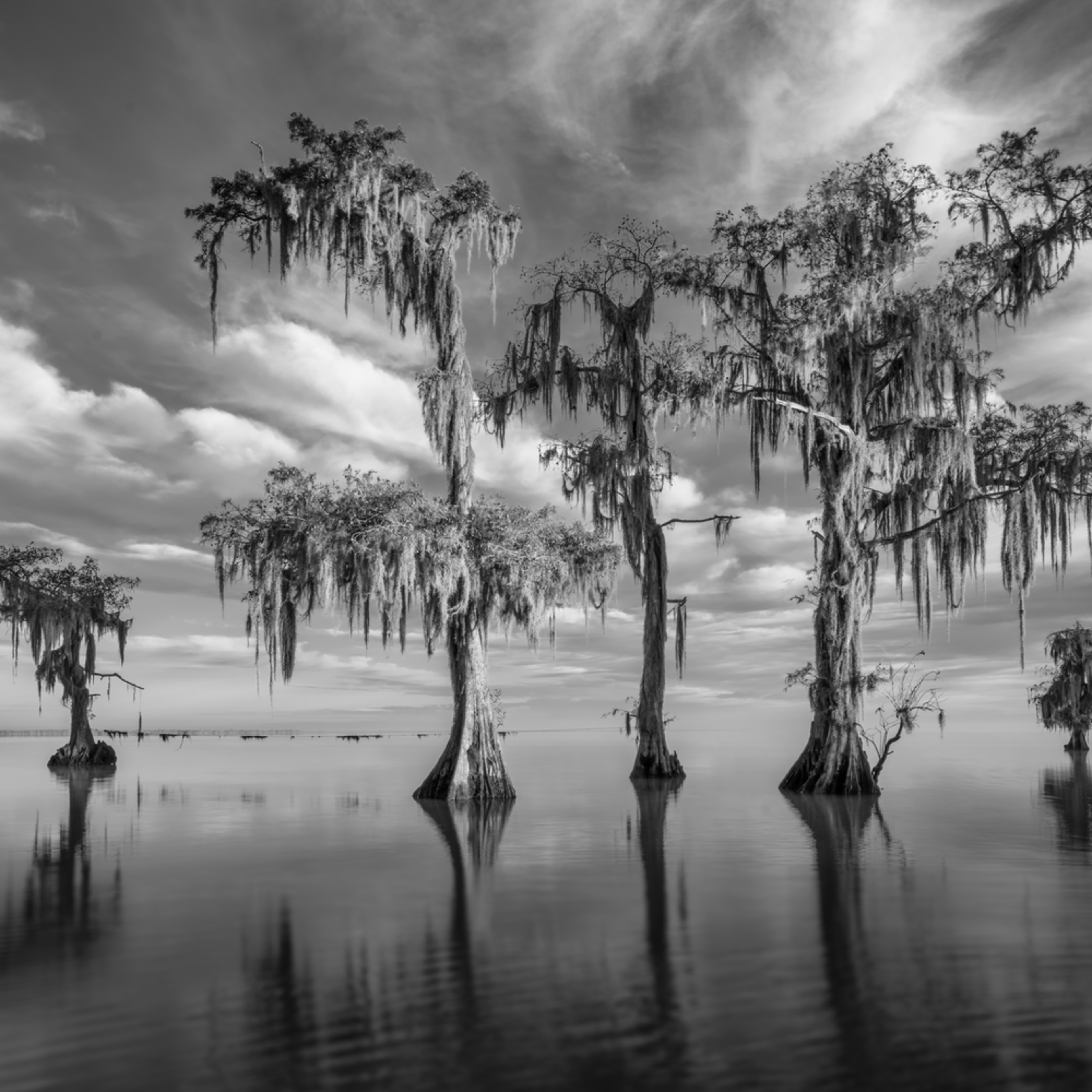 Andy crawford photography lake maurepas 20171125 2 i8gyvn