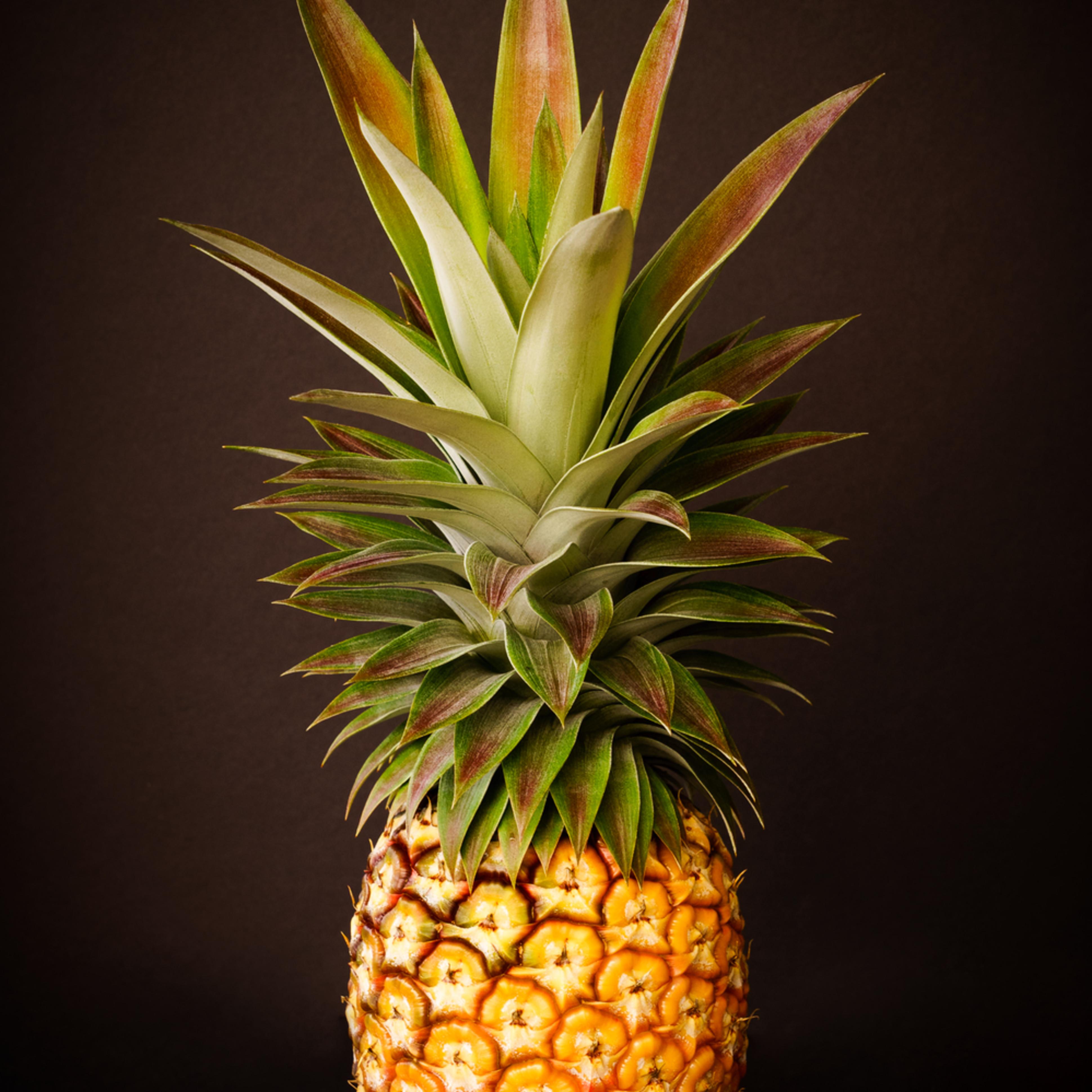 White pineapple king 2x3 wwhqiv