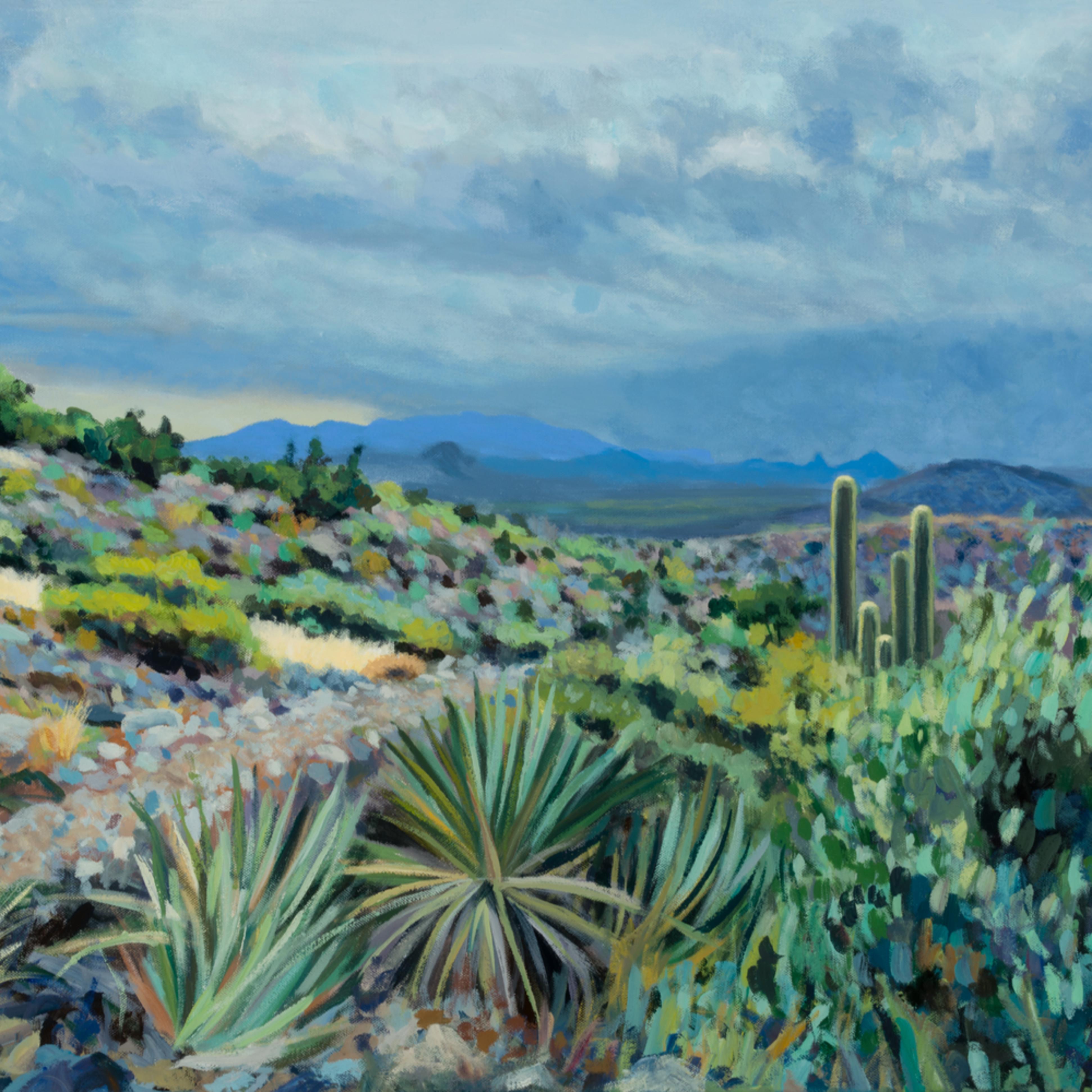 A desert mountain view zwkw9t
