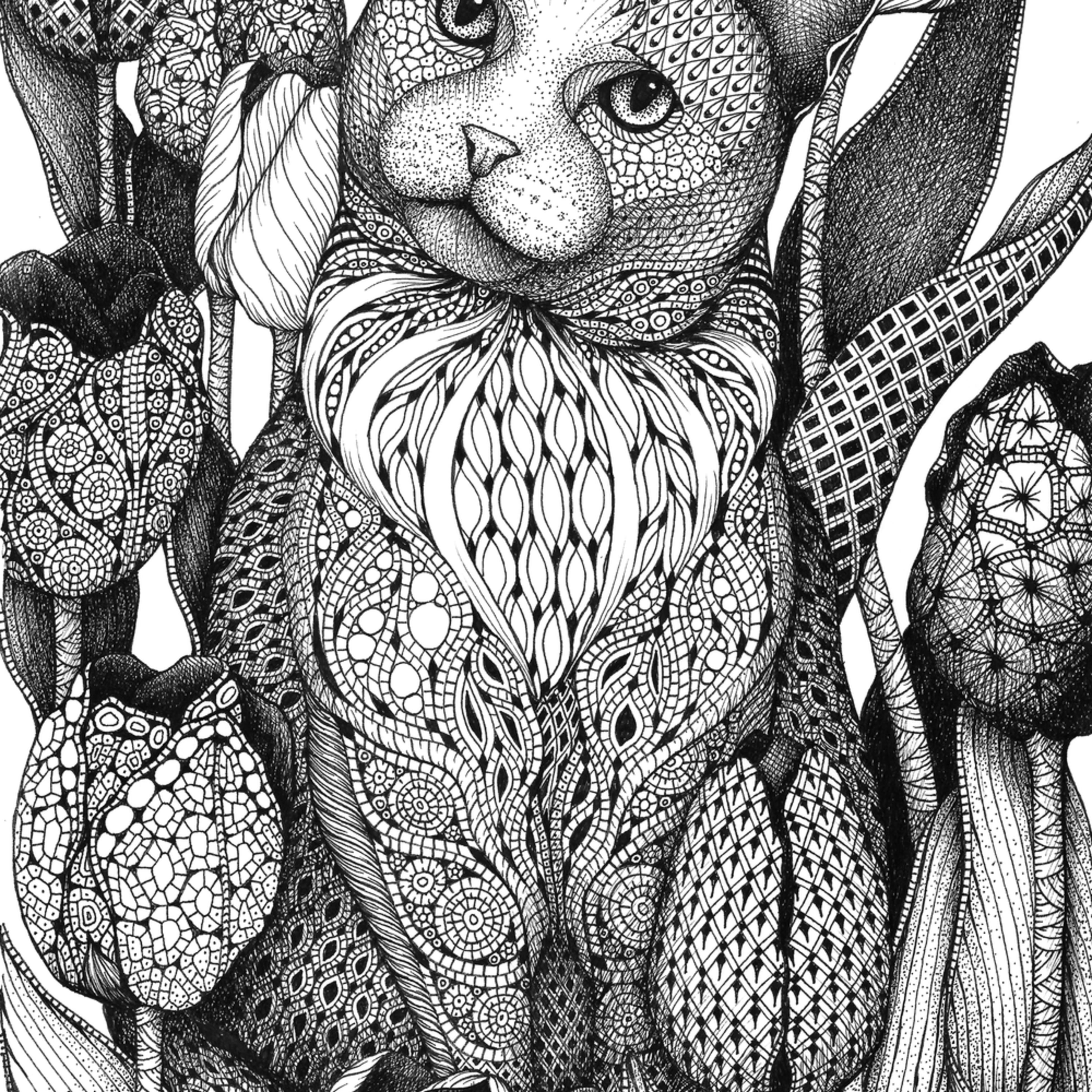 Cat tulips ip7bcc