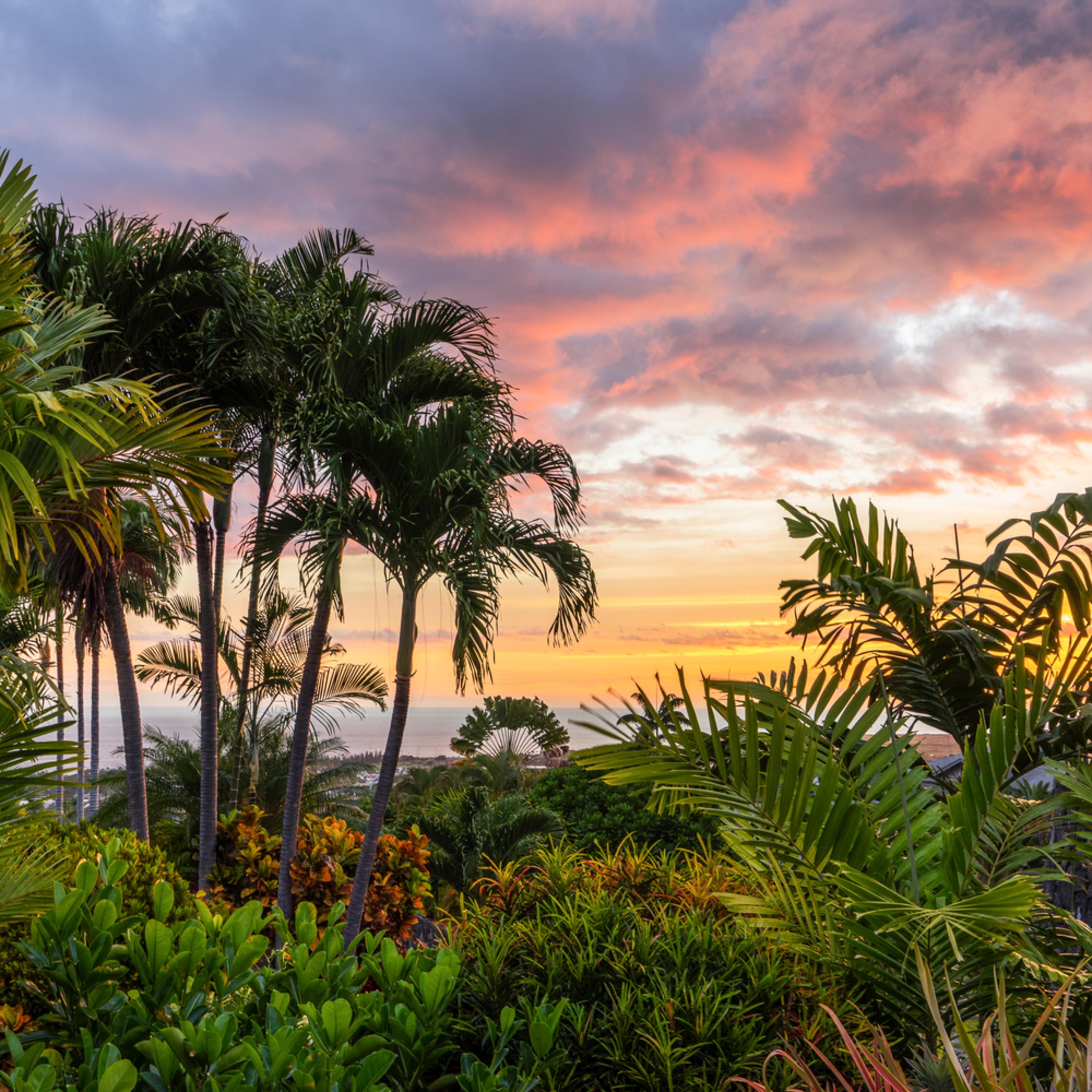 Sunset in paradise c1q7hx