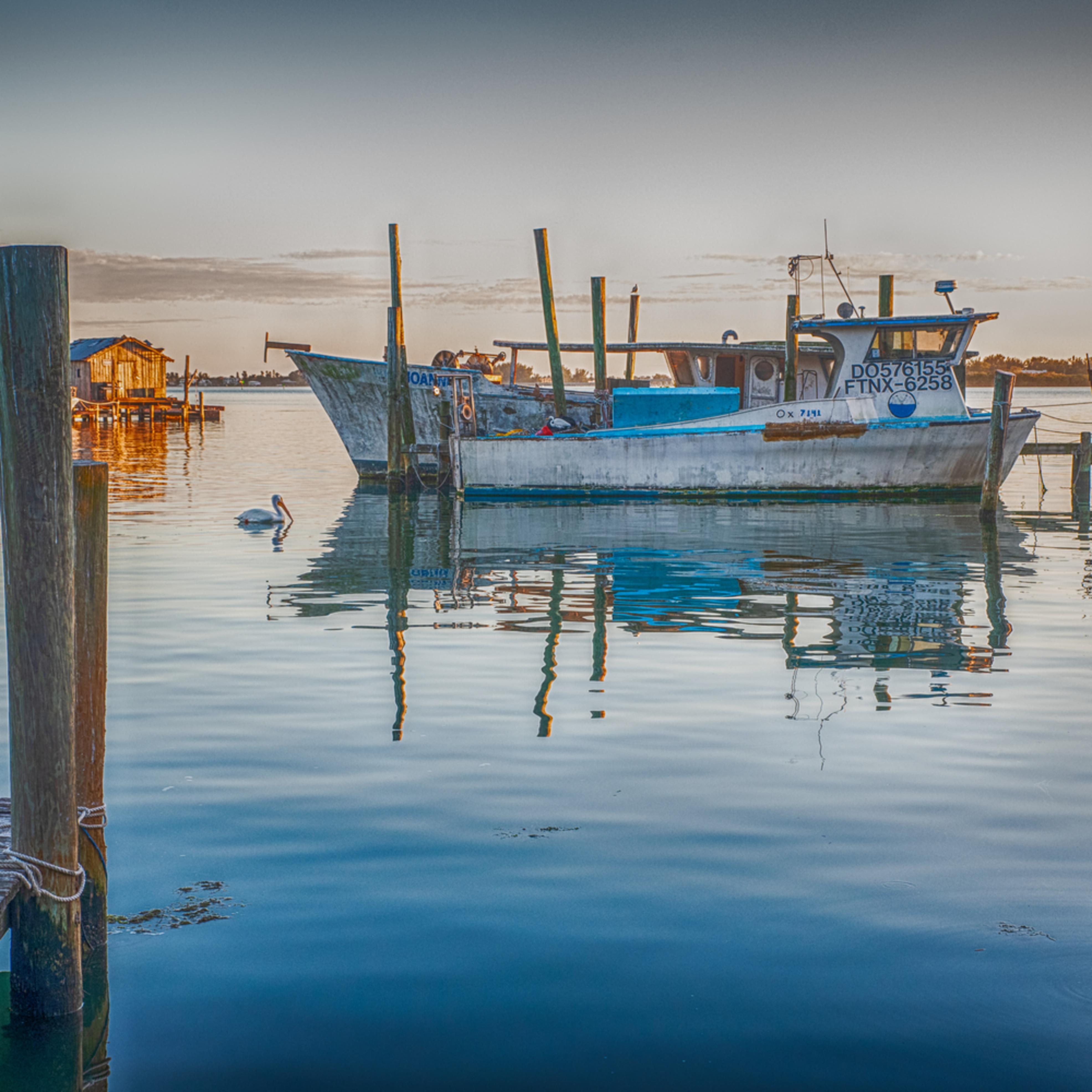 Star fish dock du8o06