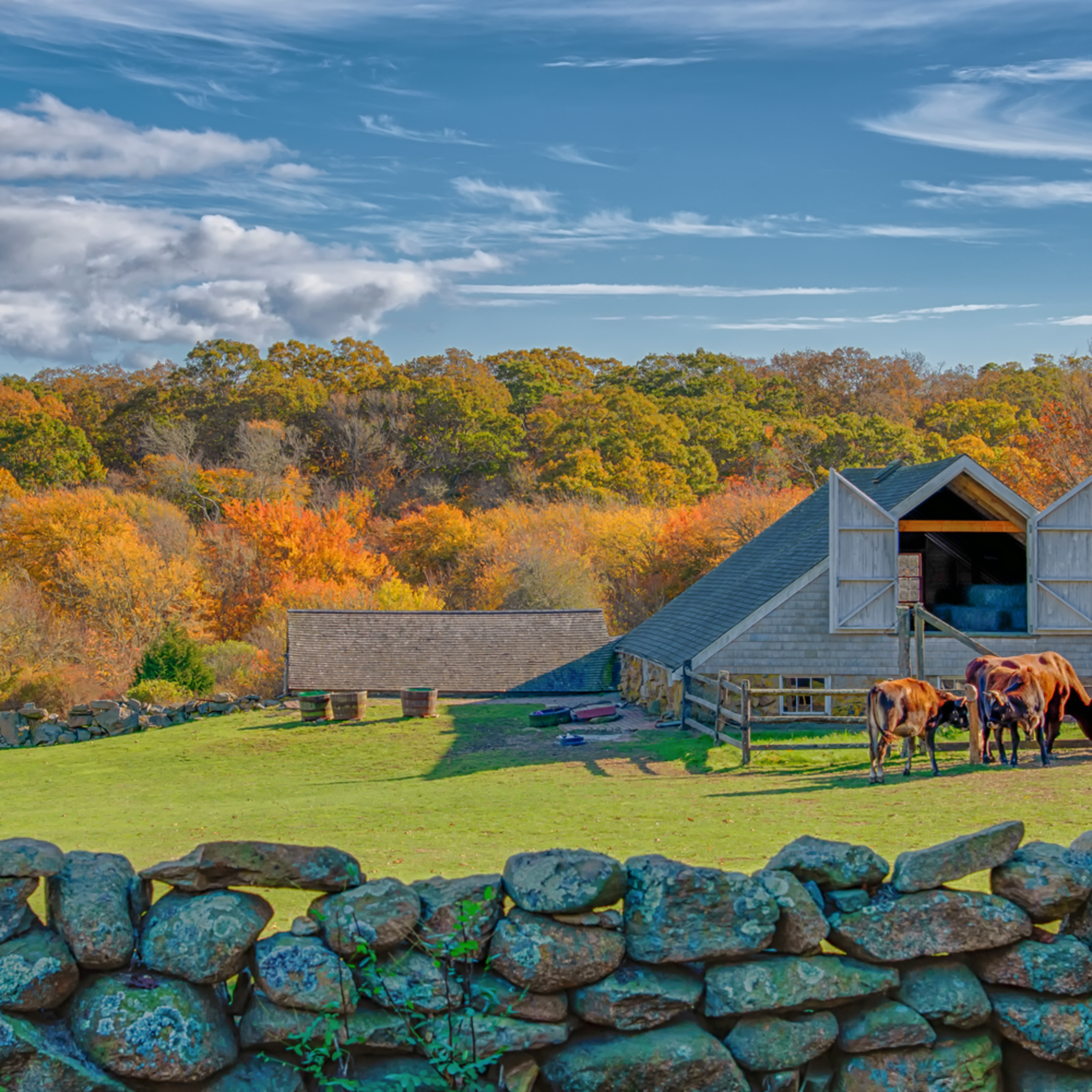 Brookside farm fall s0x6mx