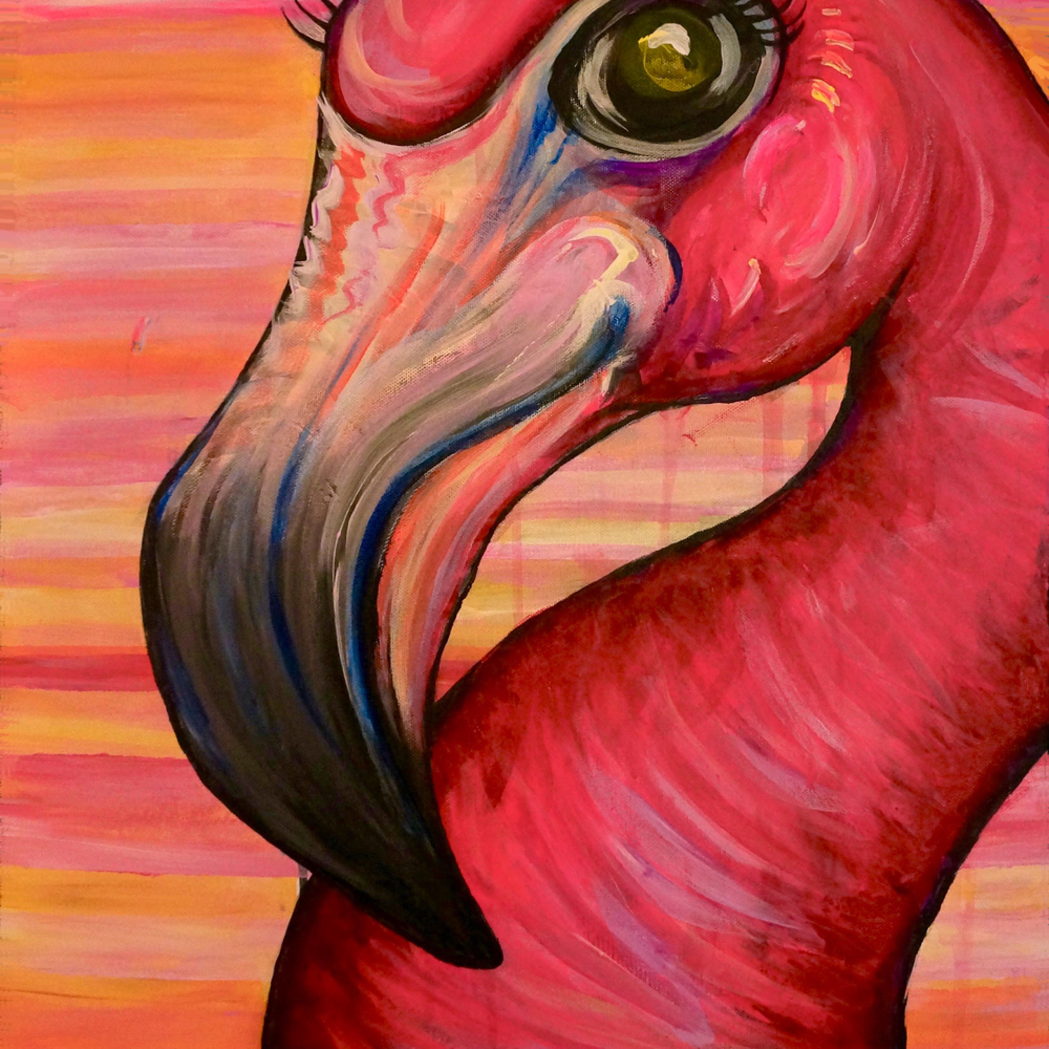 Funky flamingo.1 jsw8fd