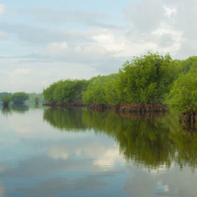 Biscayne shoreline swbzpx