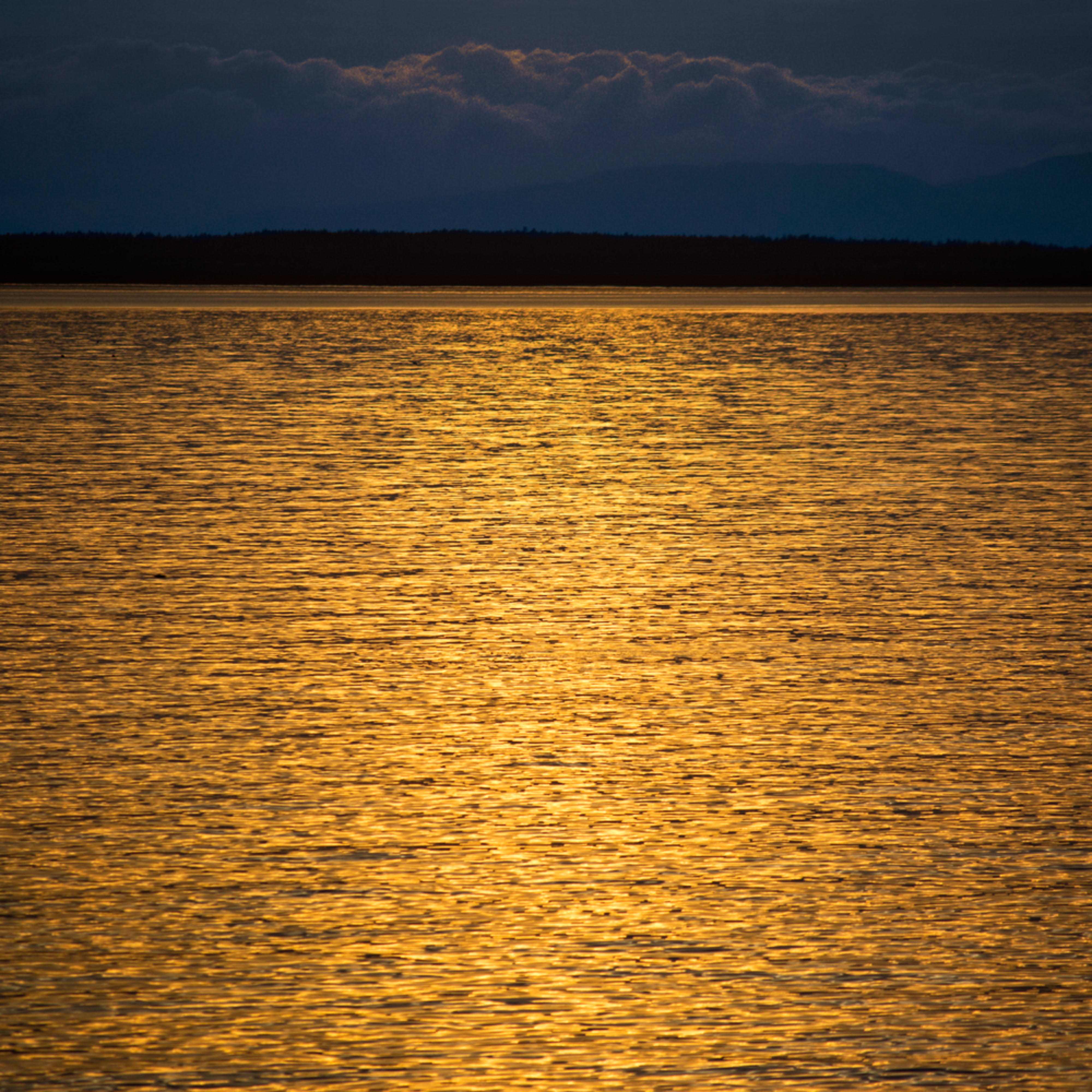 Golden seas wn6alm