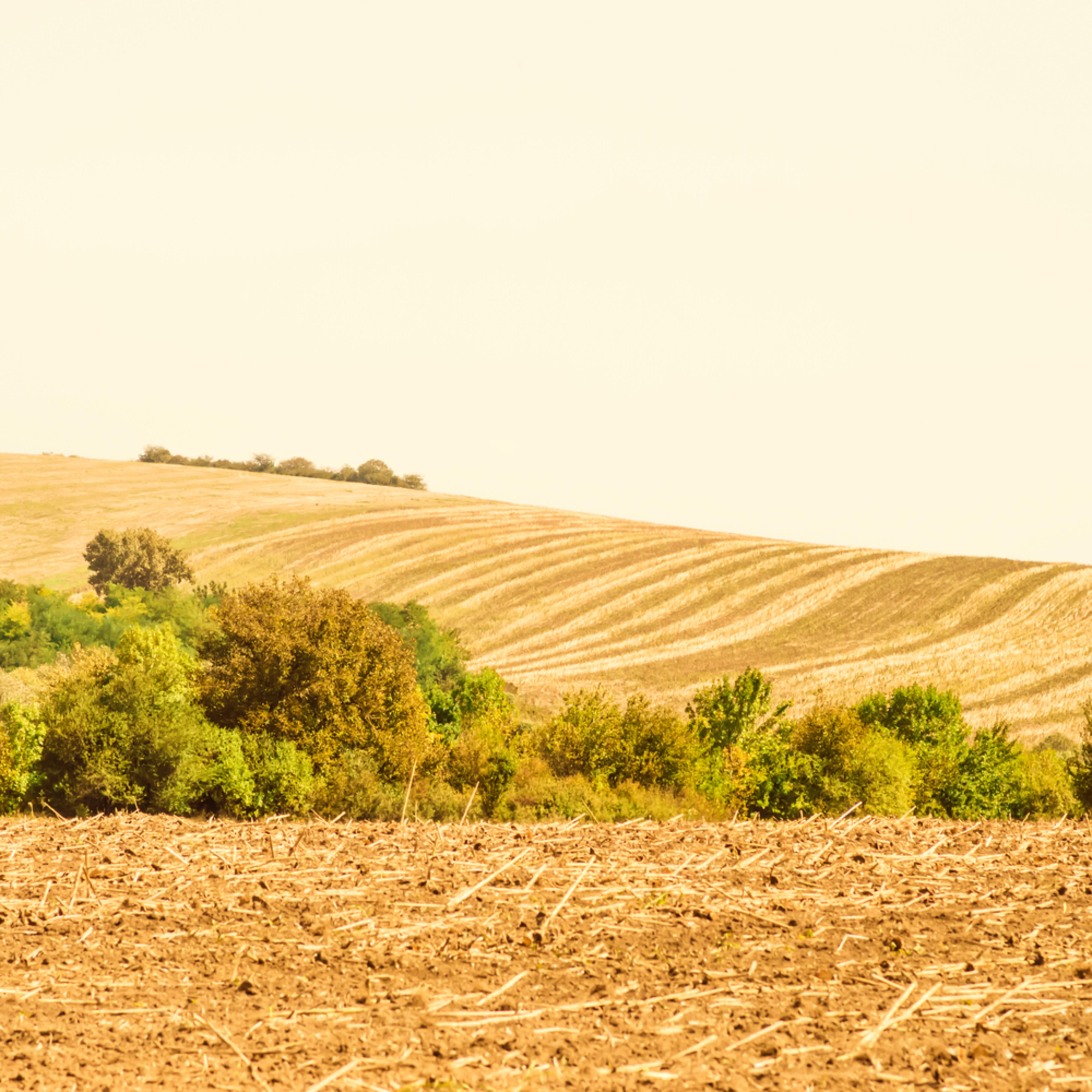 Silent landscape 4 fine art print silvia nikolov qoboay