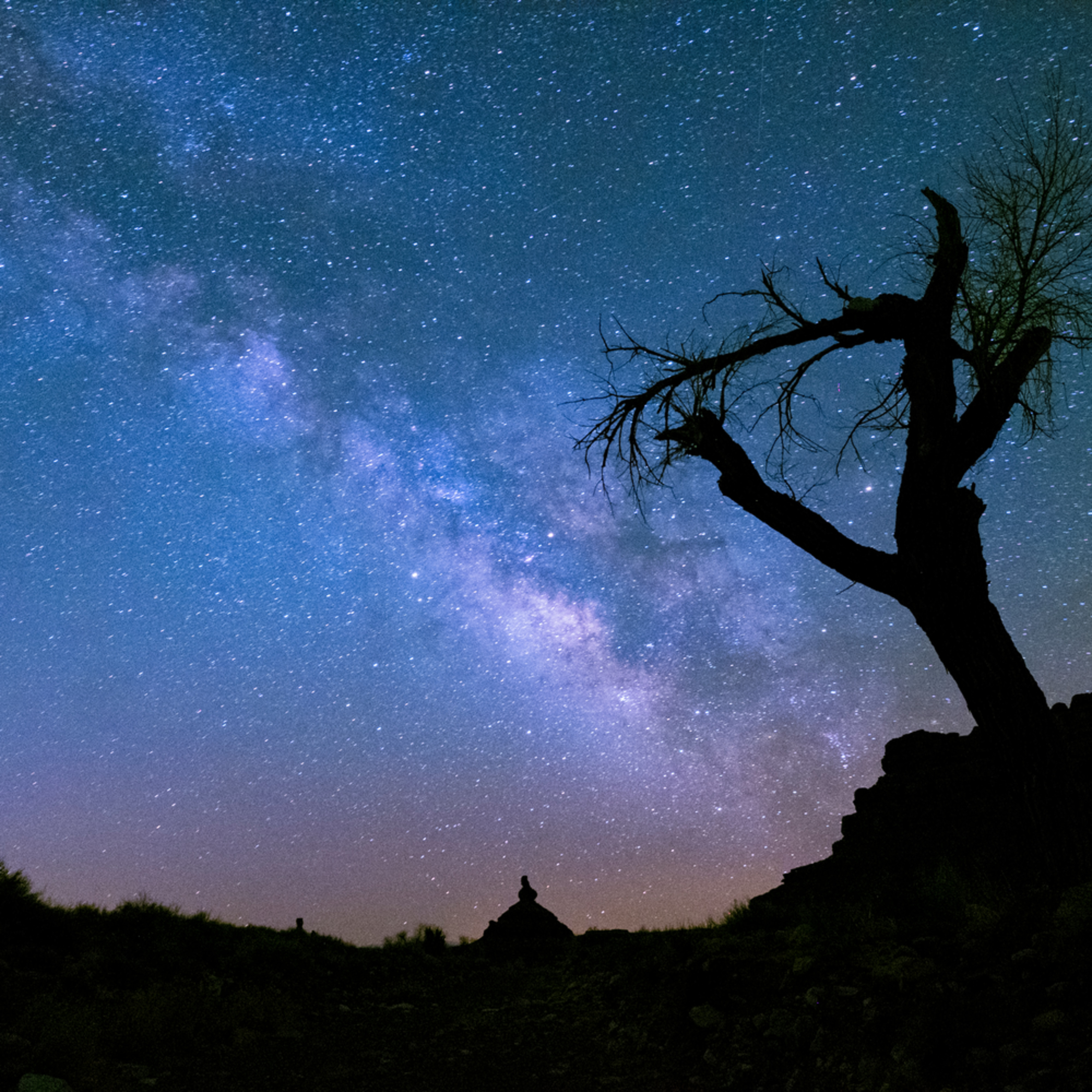 Milky way with tree h9d1ns