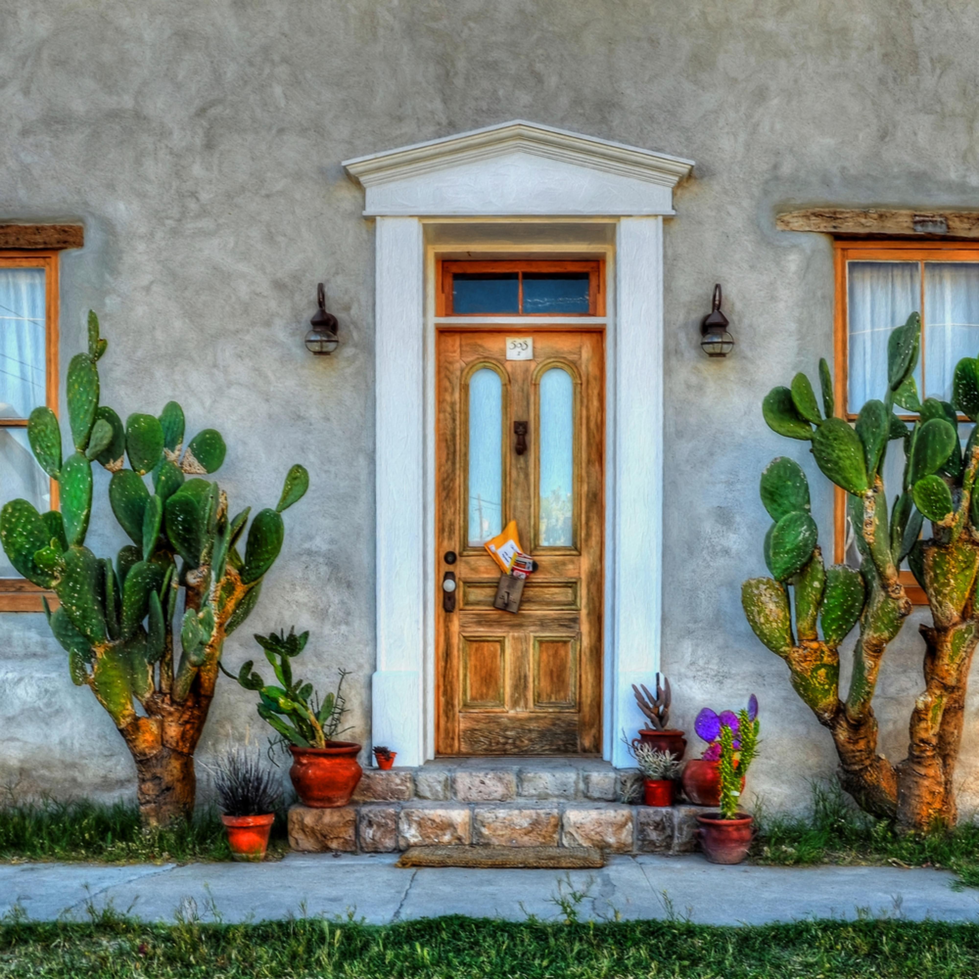 Cactus guards qraw7y