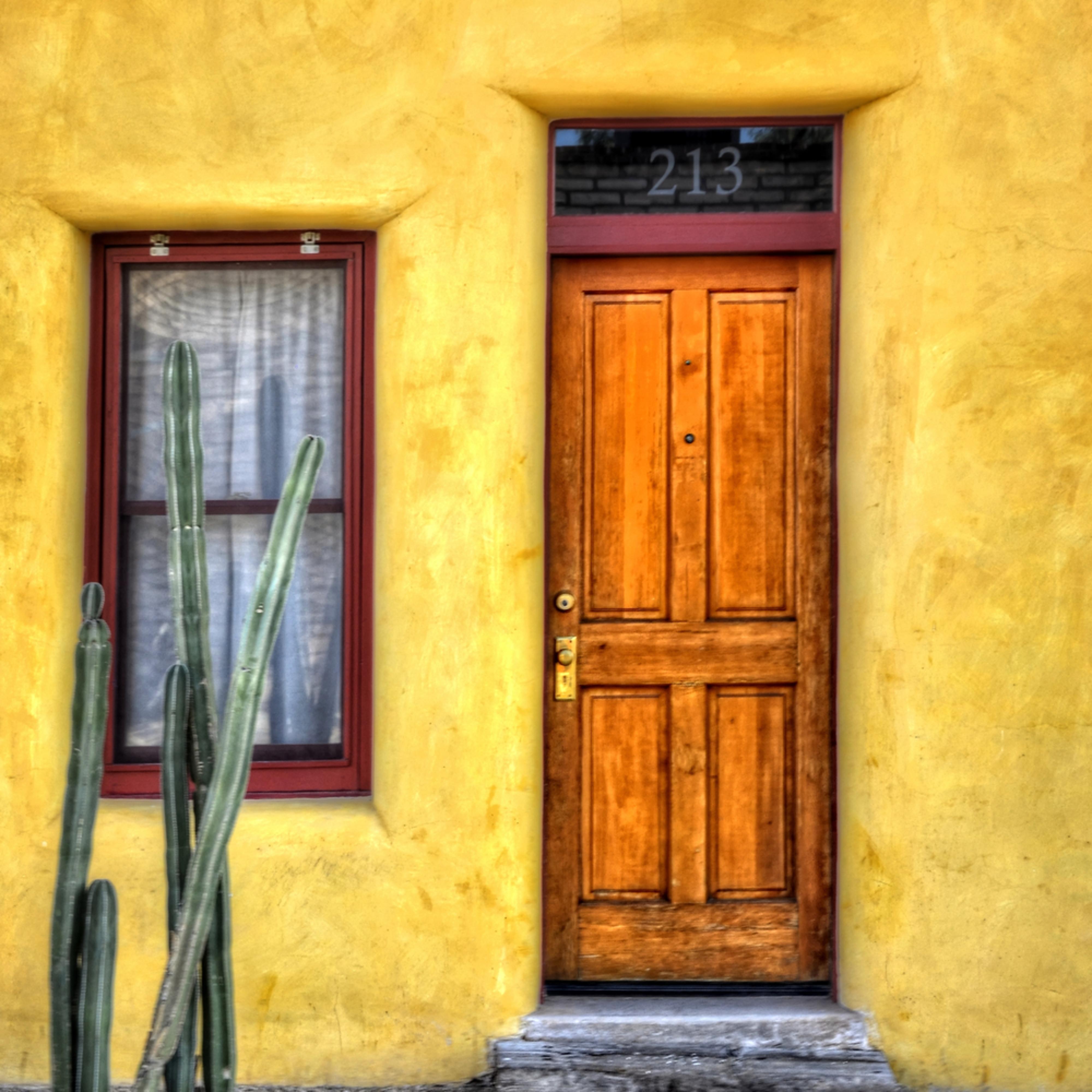 Door window and cactus cwflas