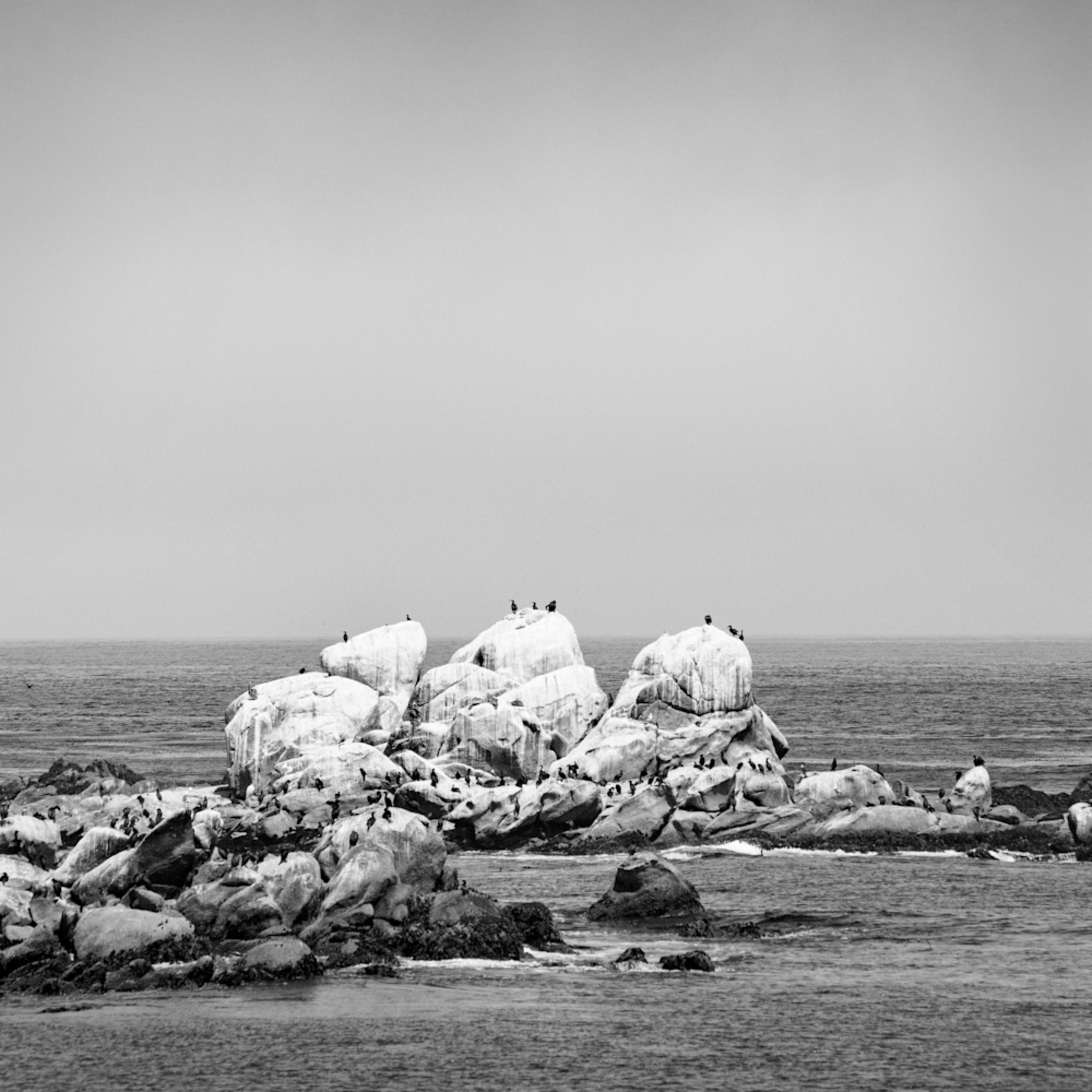 Monterey 08 cwucrz