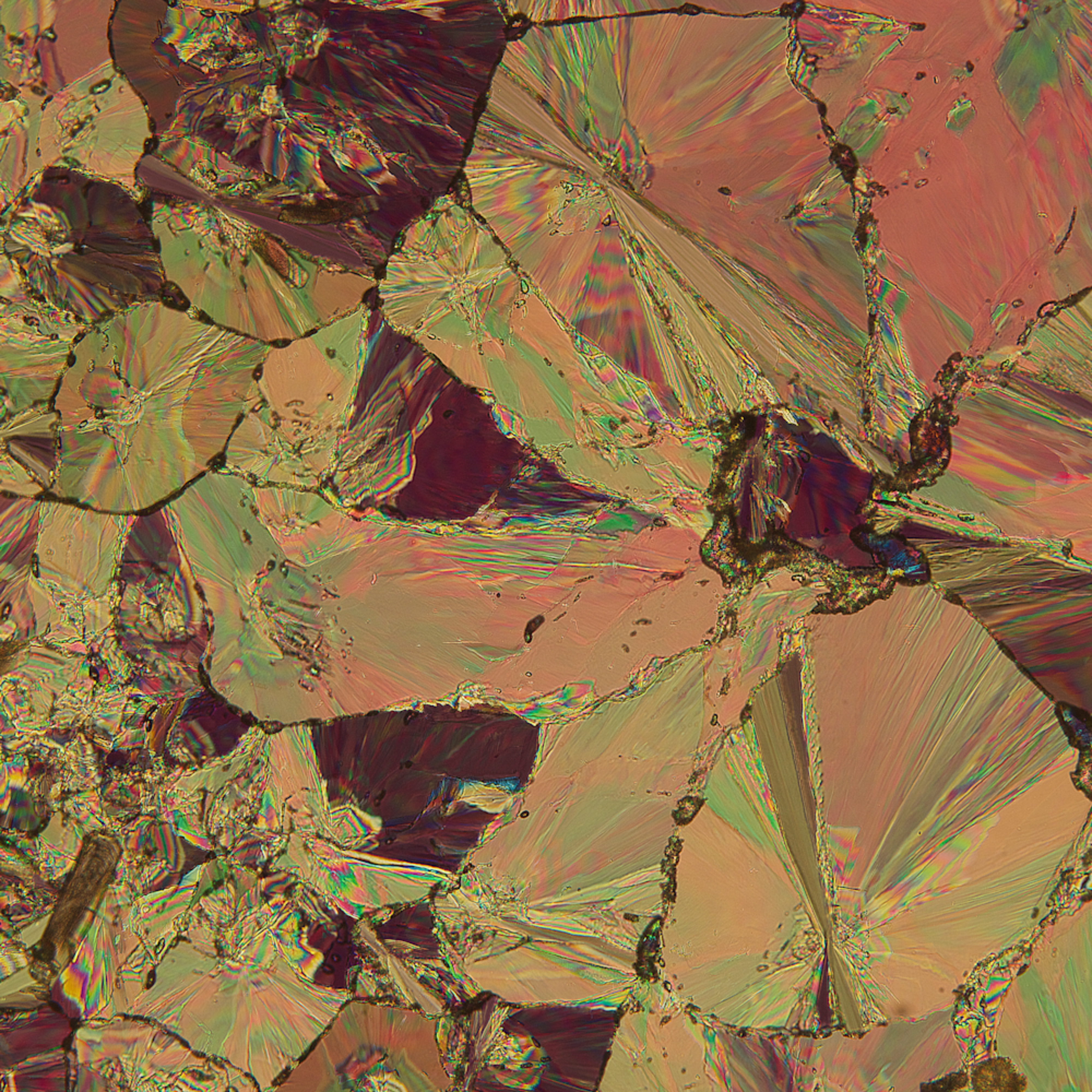 Wild granite rose hippuric acid gwcmbz