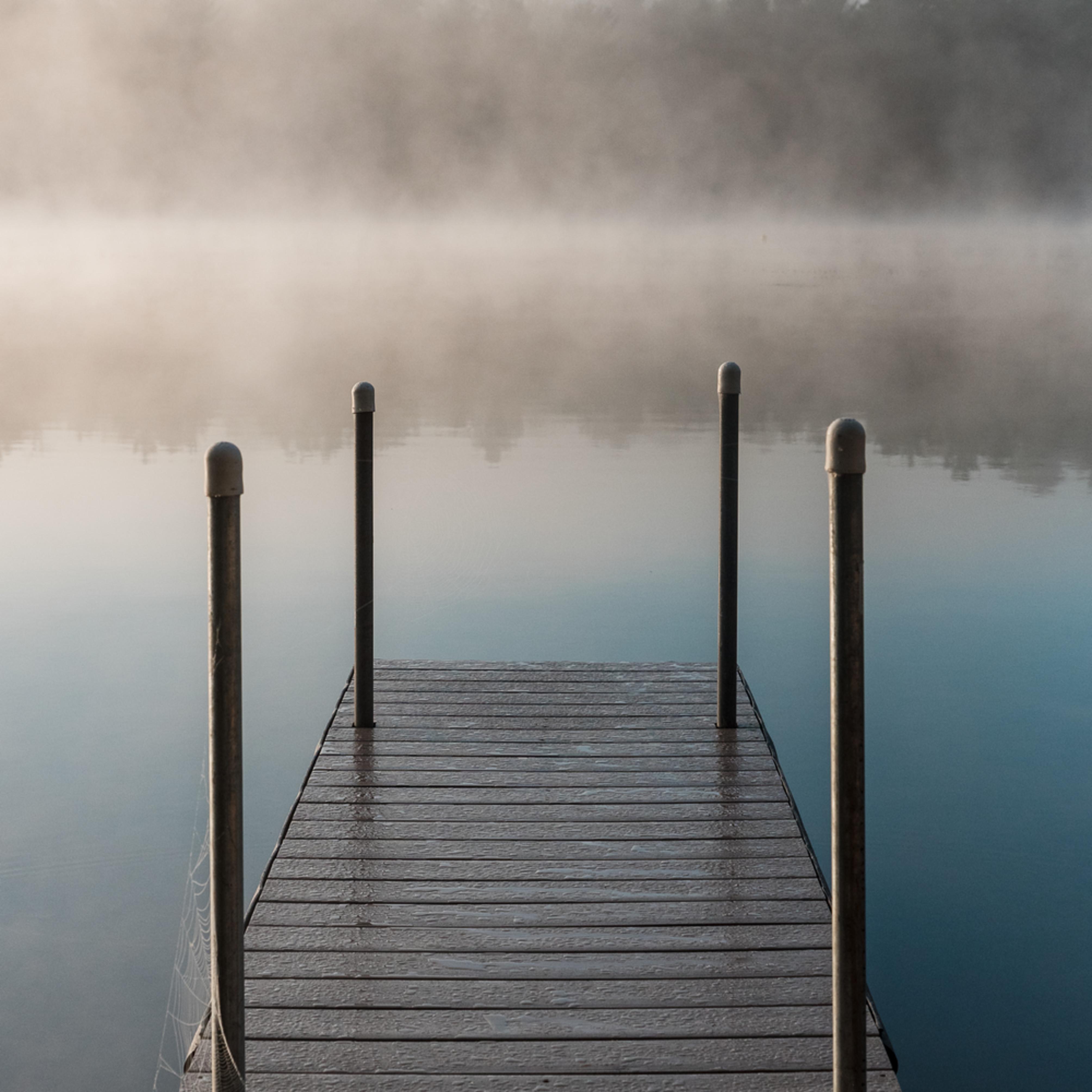 Misty morning fofx14