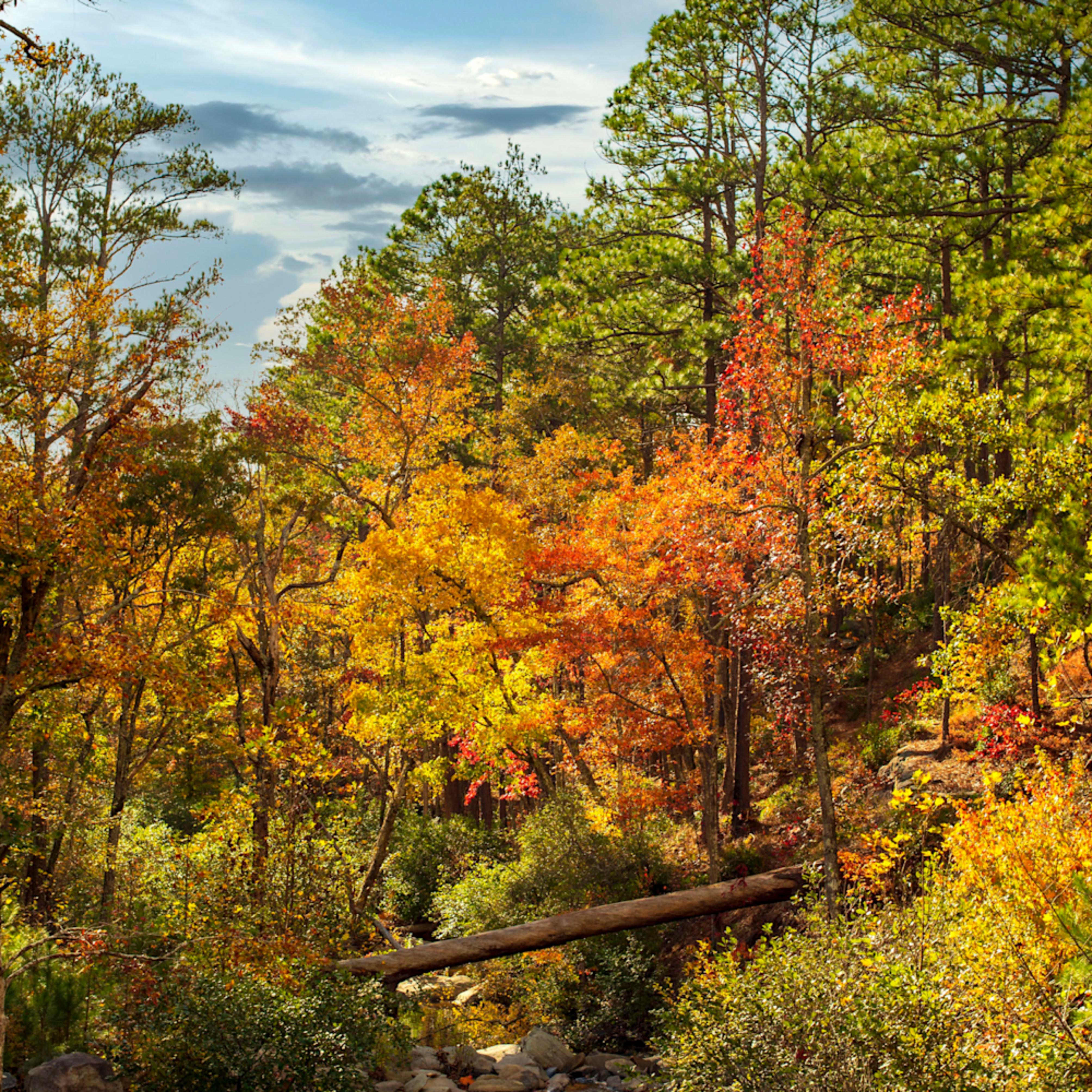 Creek fall 5 jzkonm