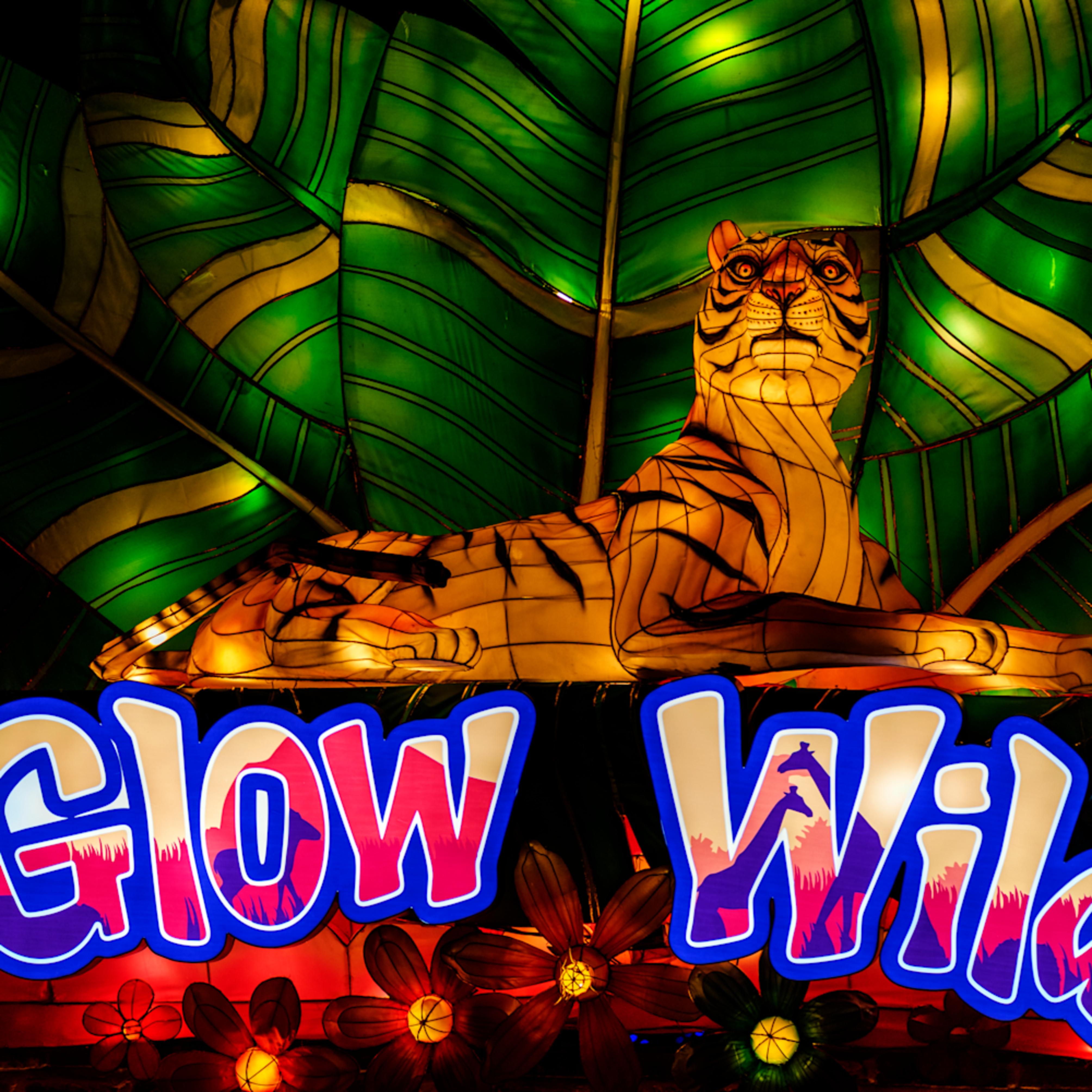 Glow wild exgw8s