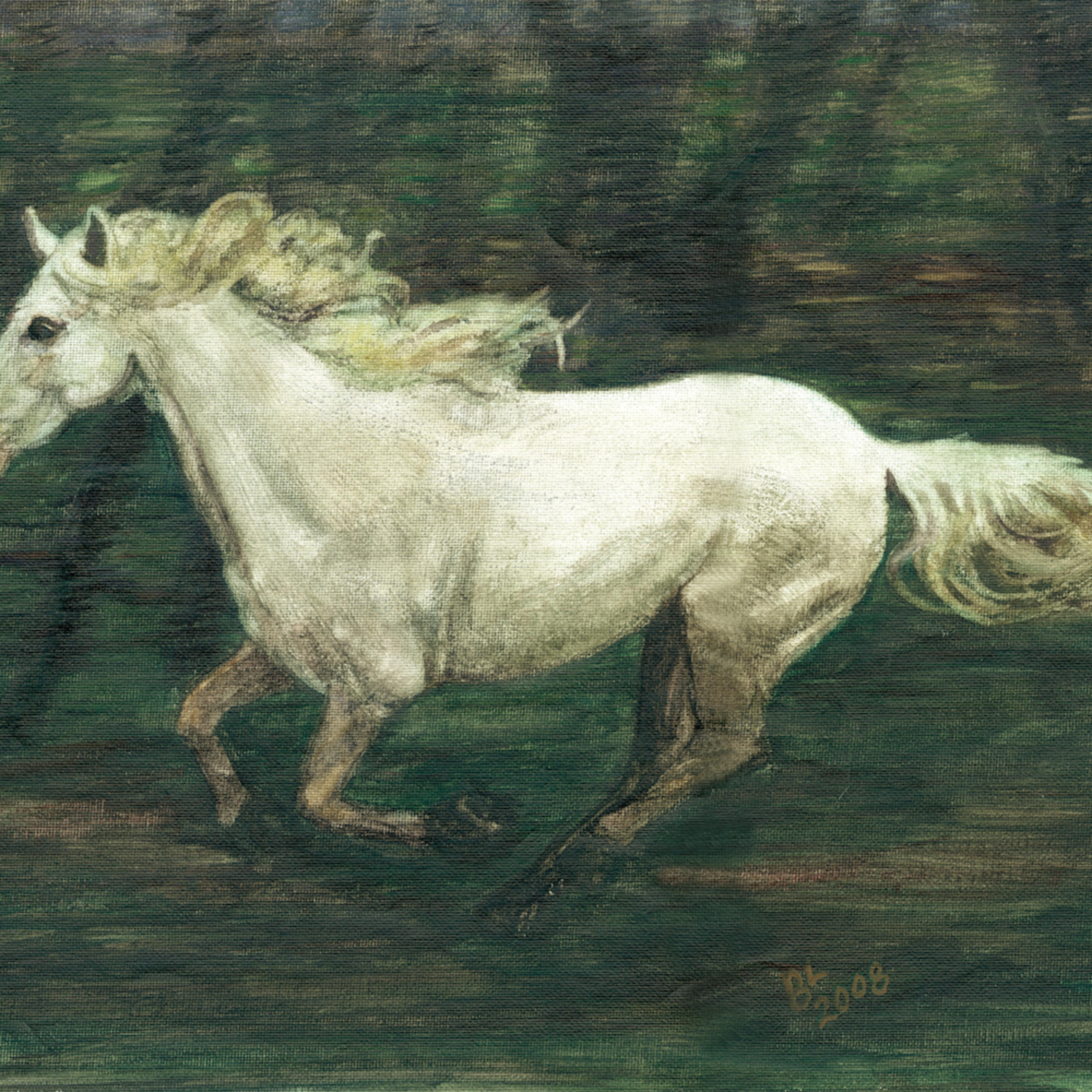 Horse galloping by aomqql