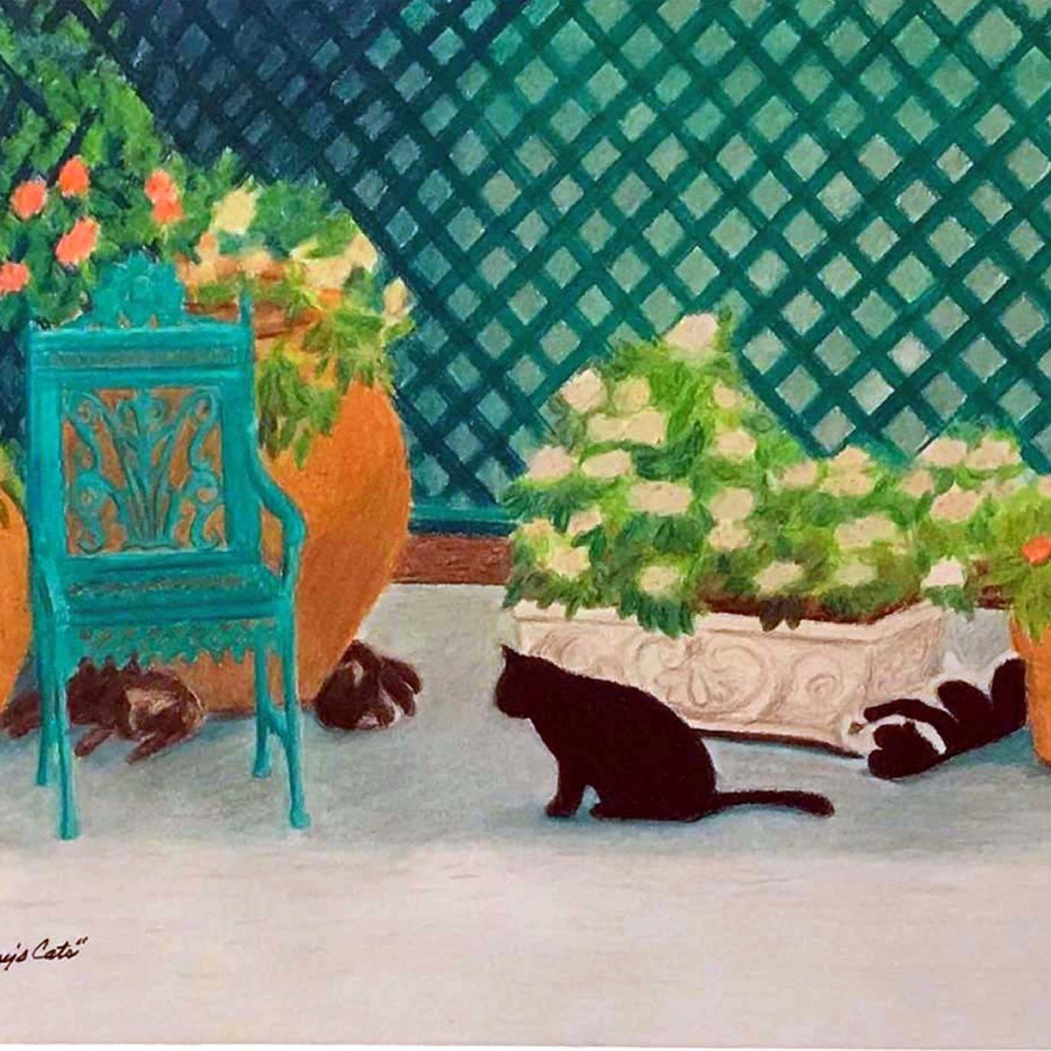 Hemingways cats jjx8wd