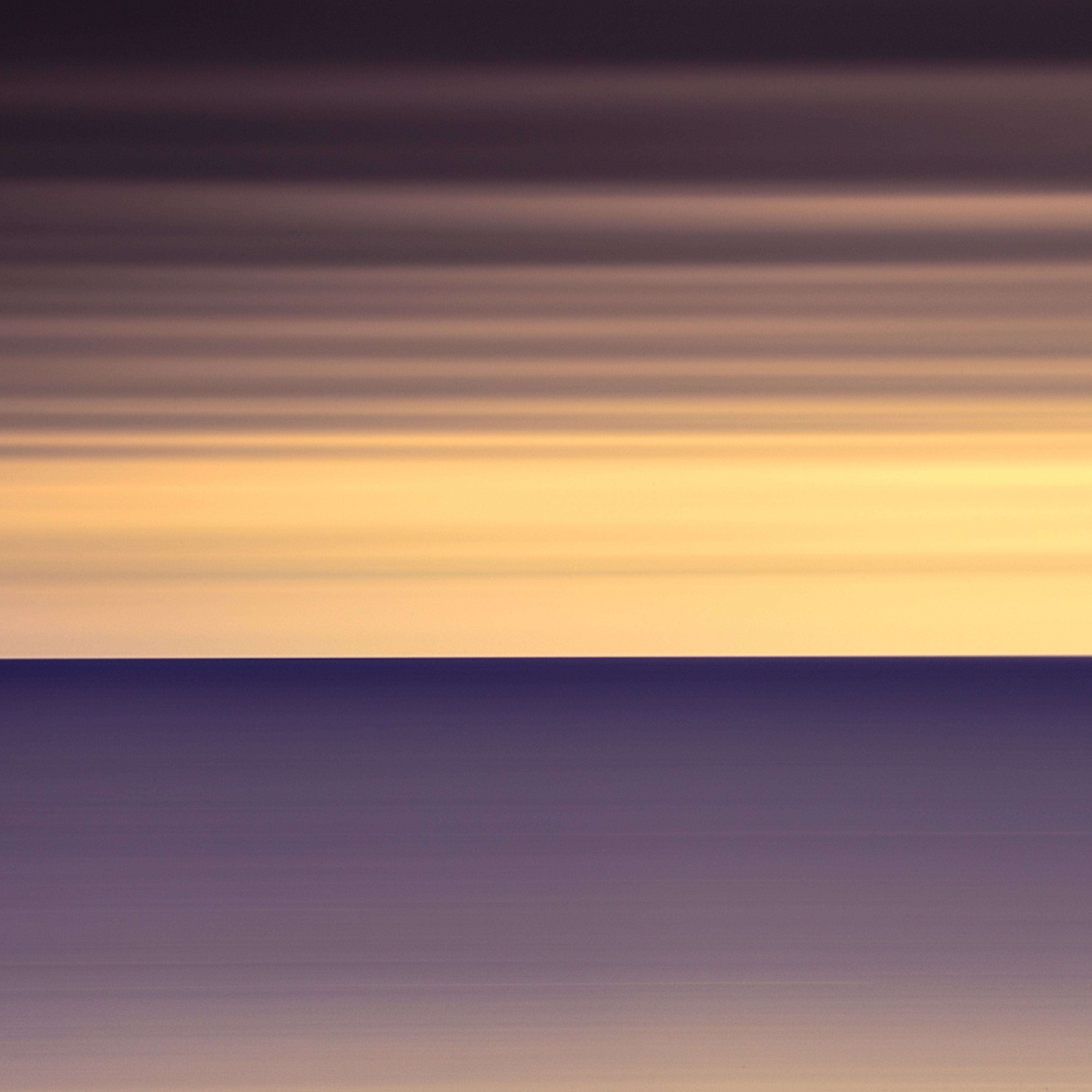 Orang purple abstract w4mpnp