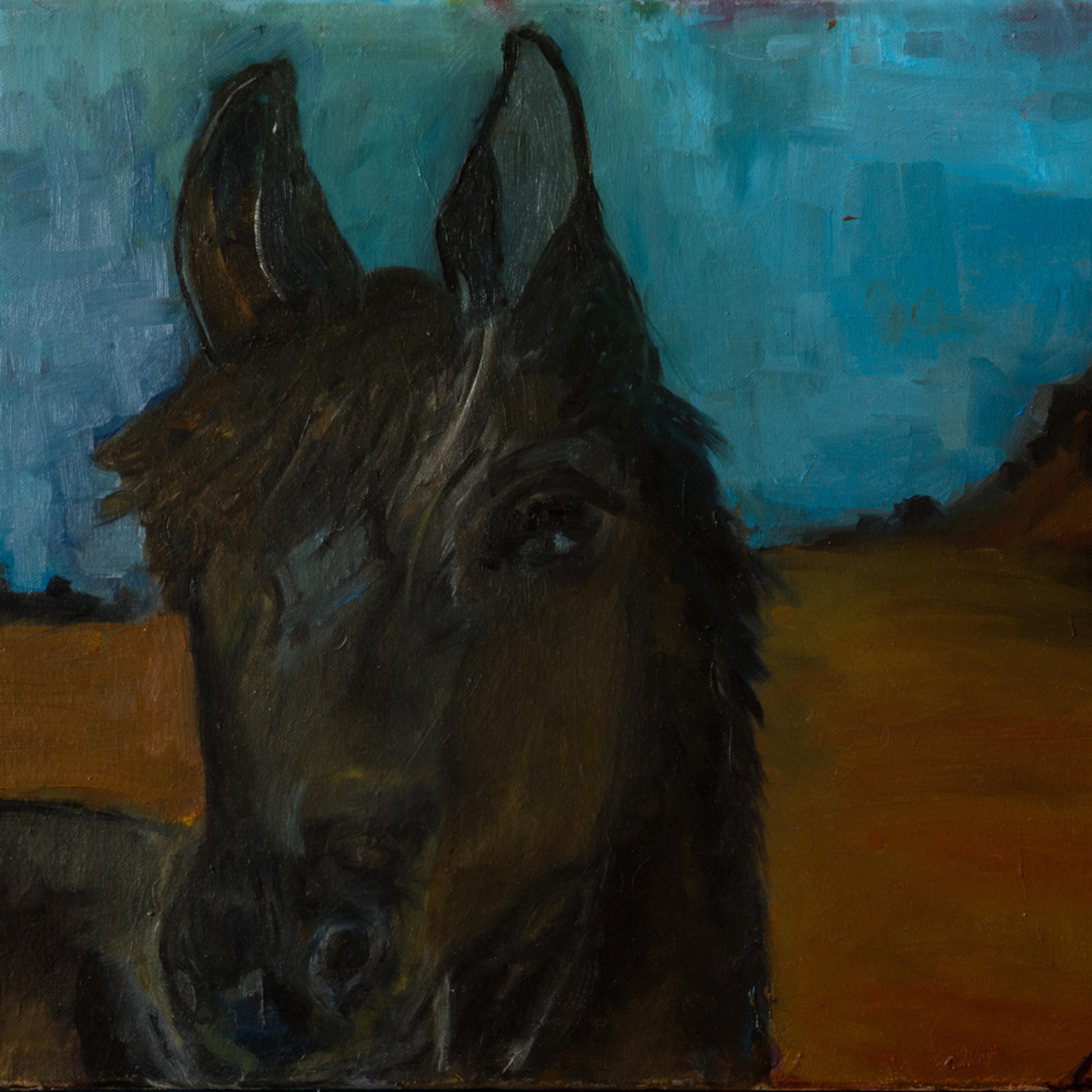 Shadow   ane howard paintings 12 wra2qn