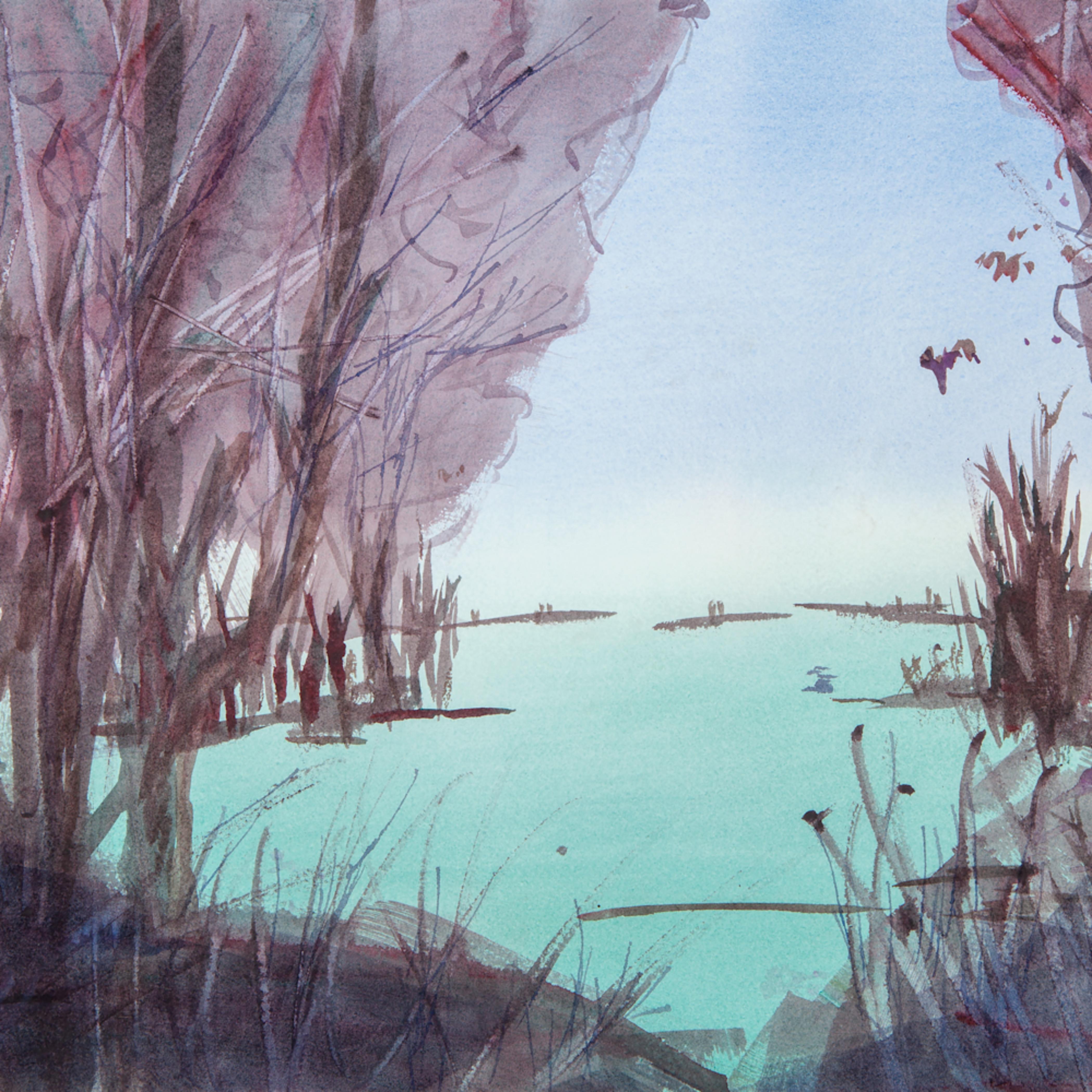 Marsh leygkd