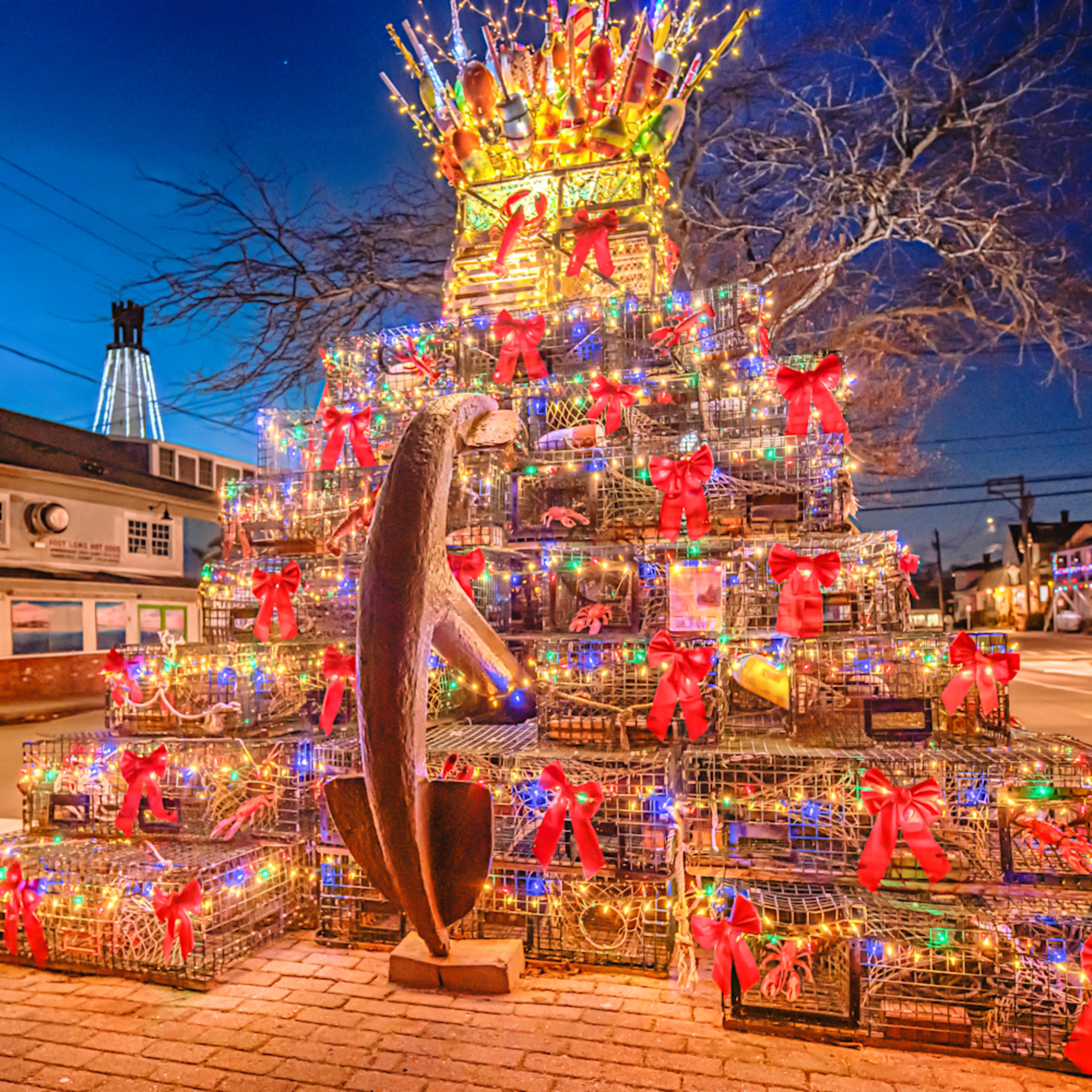 Provincetown christmas tree bmtdlr