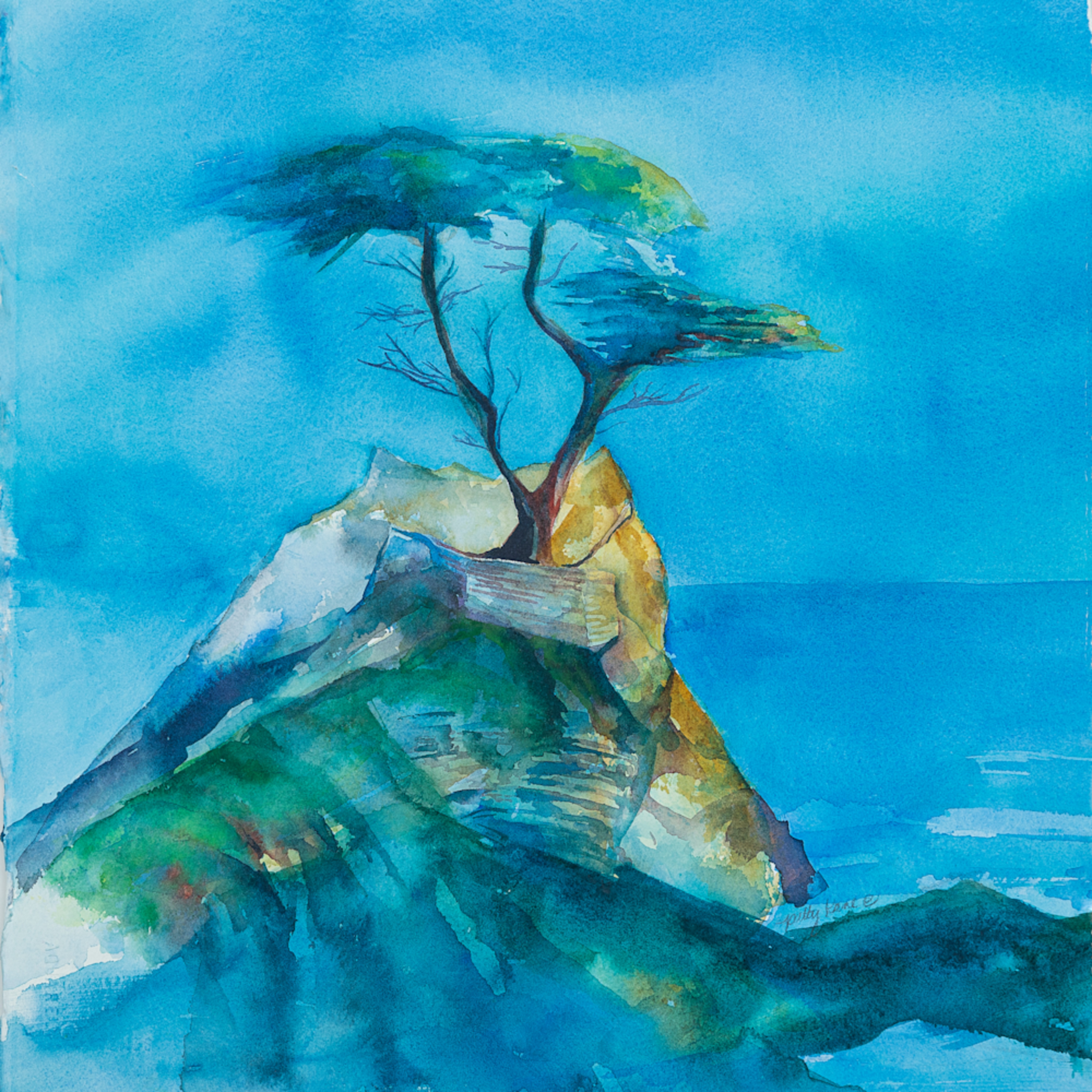 A lone cypress k3ufwd