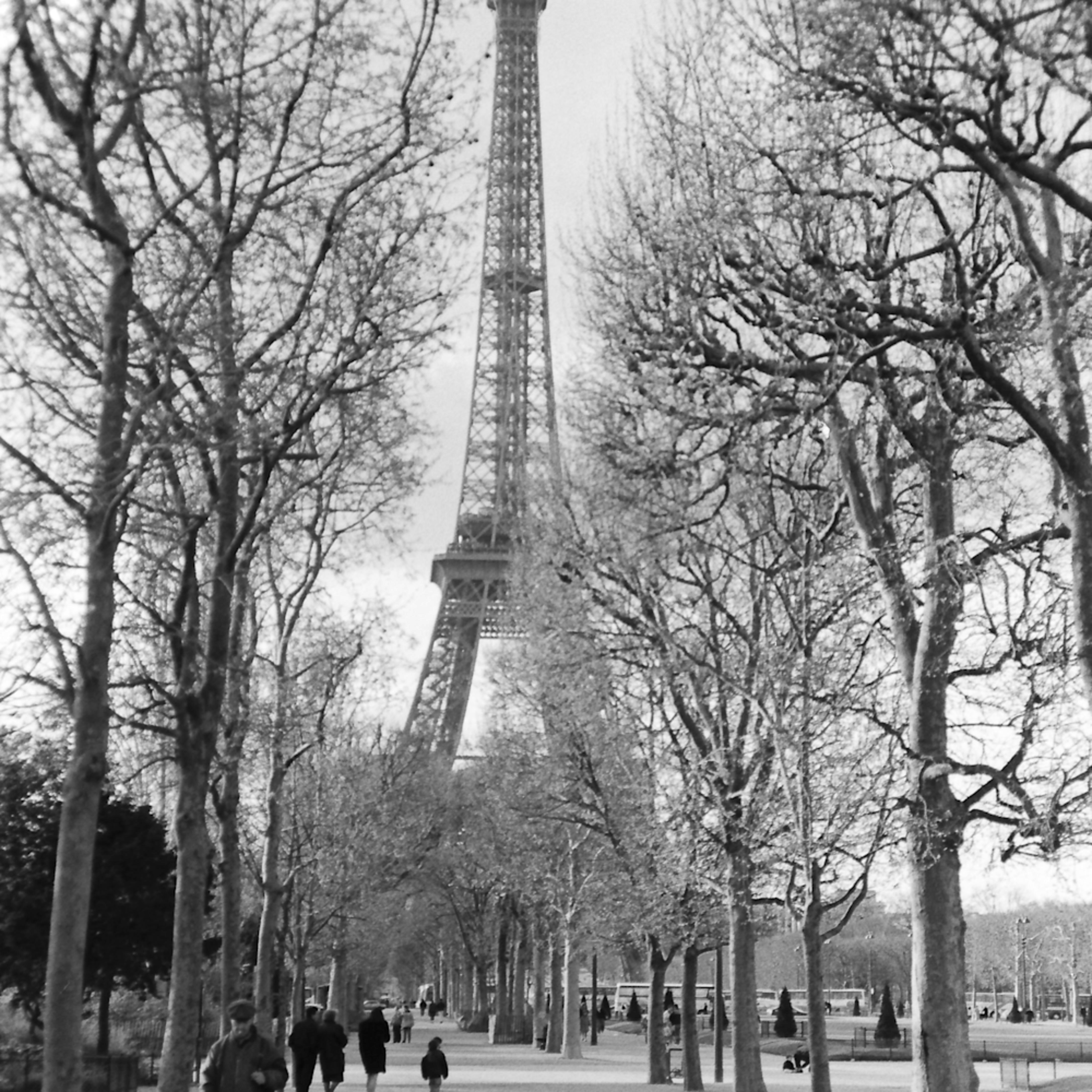 La tour eiffel acicph
