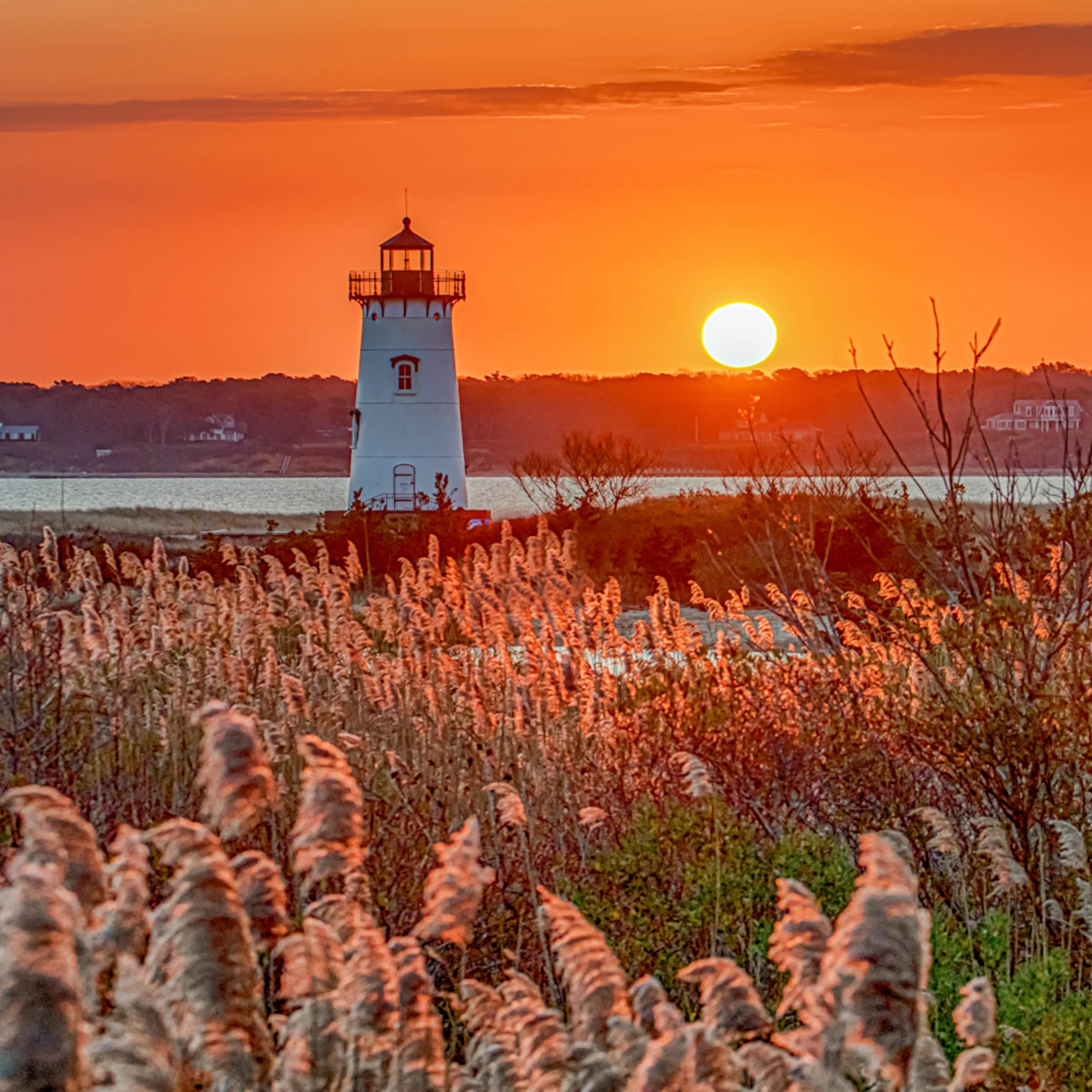 Edgartown light sunrise reeds qjik7e