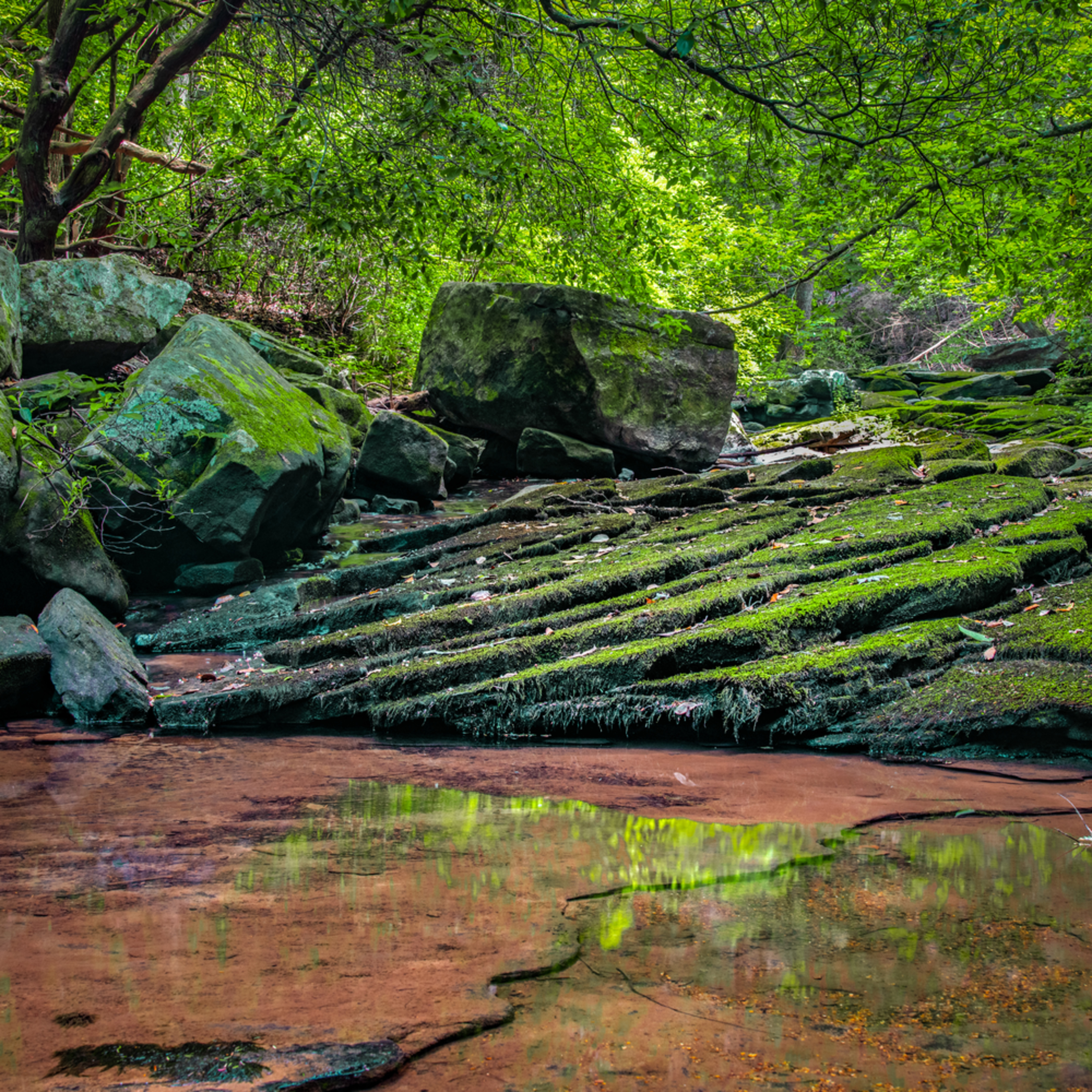 Andy crawford photography cloudland canyon state park pool pkgewd