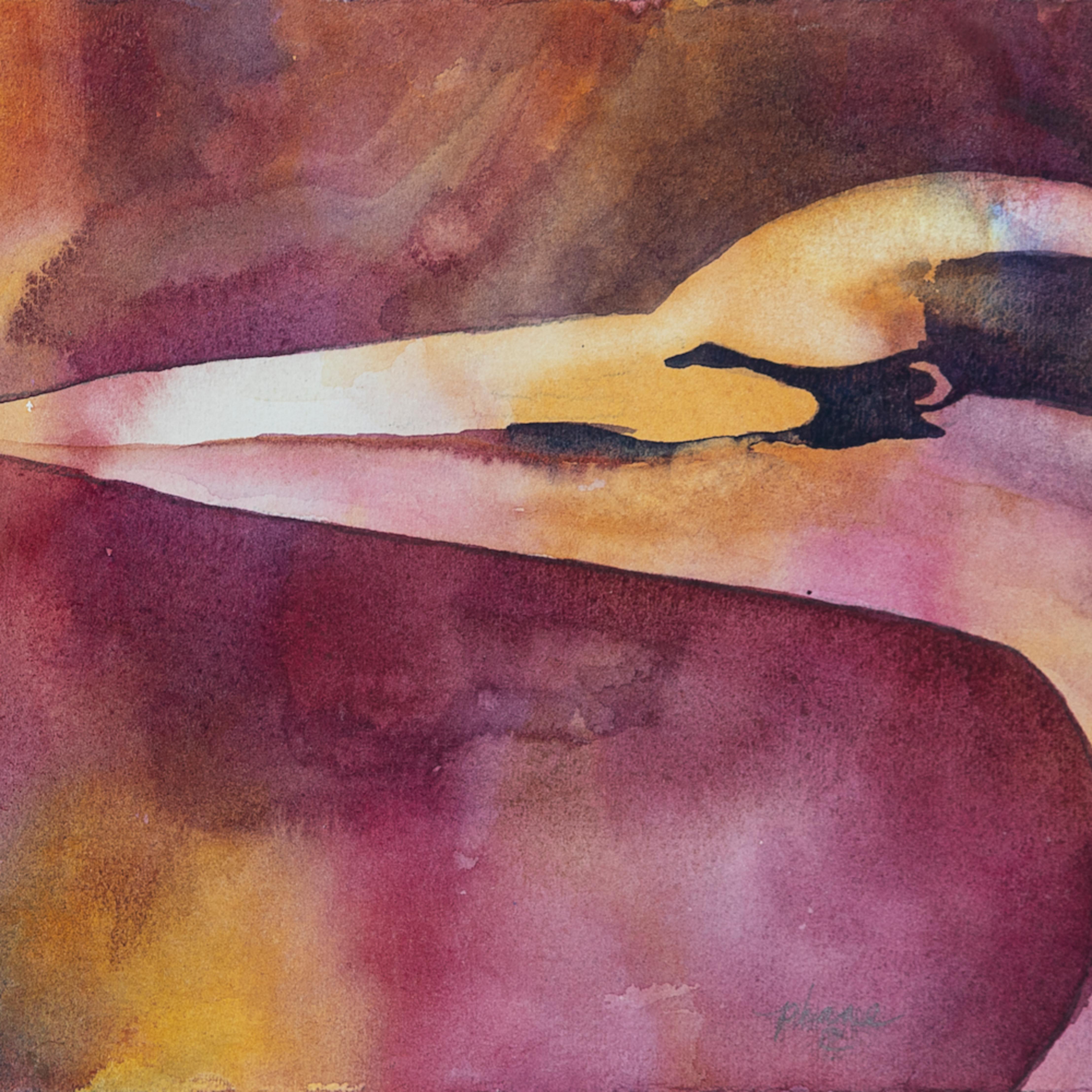 Dream bird wibjth
