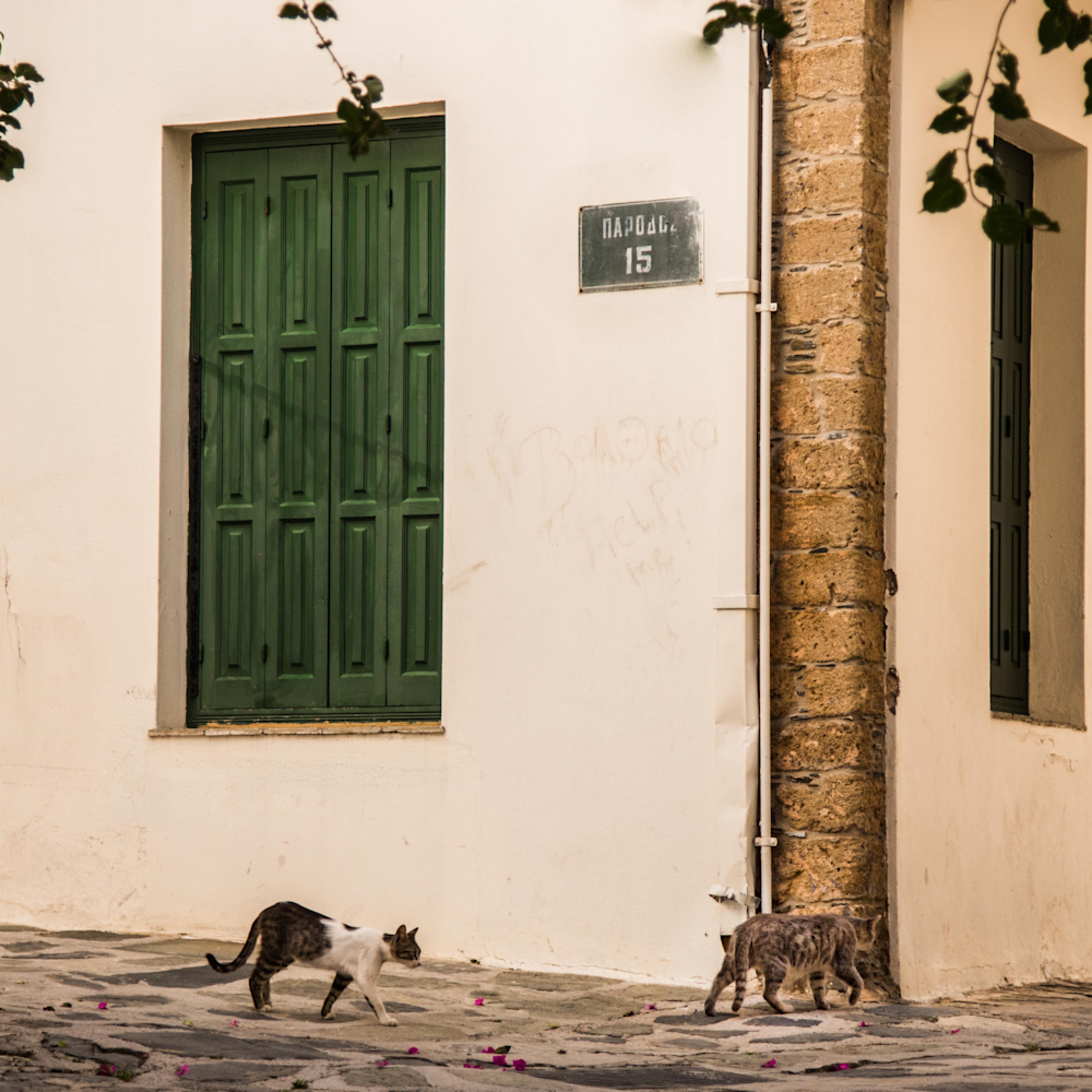 Cats passing green shutters bap 0799 lsvsuz