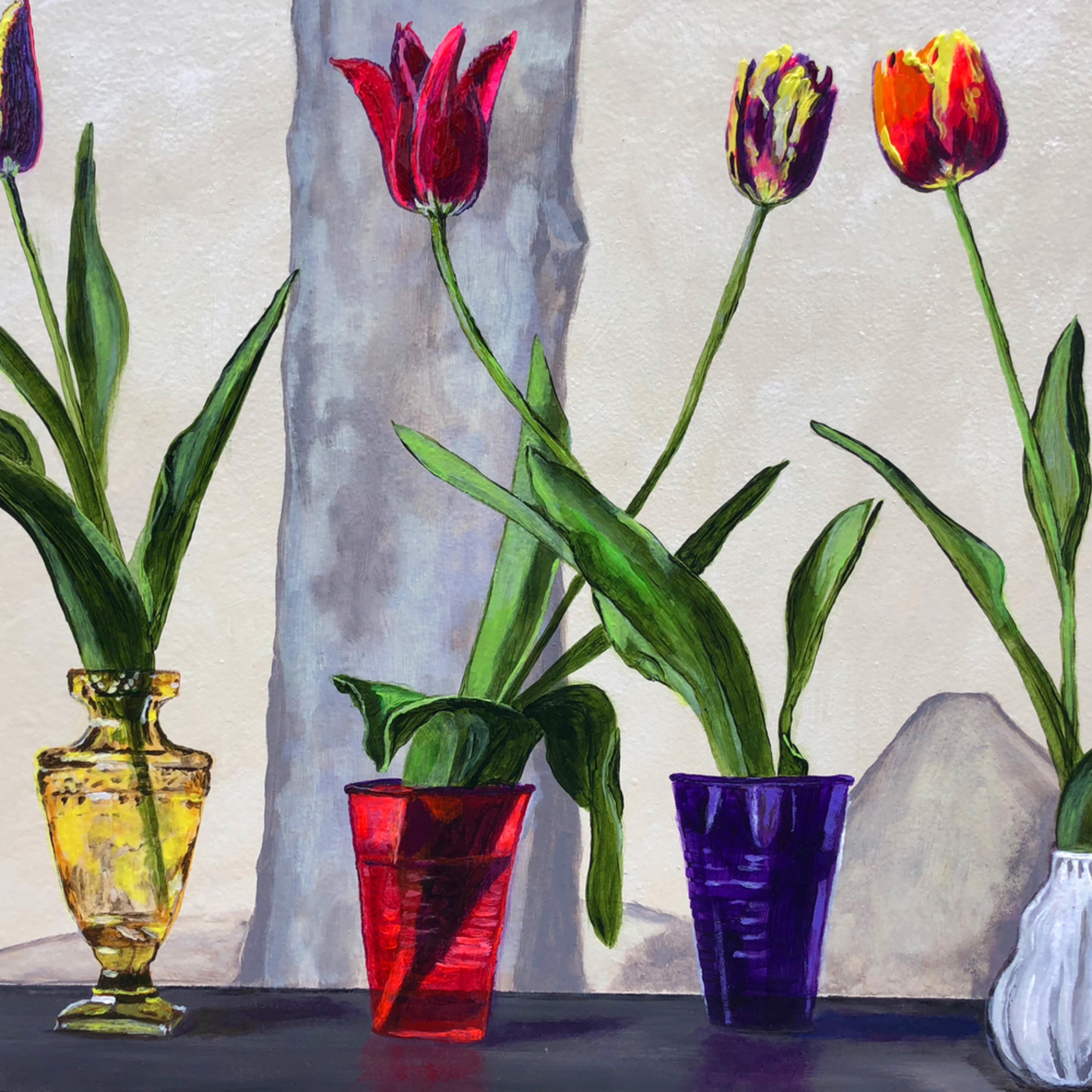 Tulips rick osborn nzvdqa