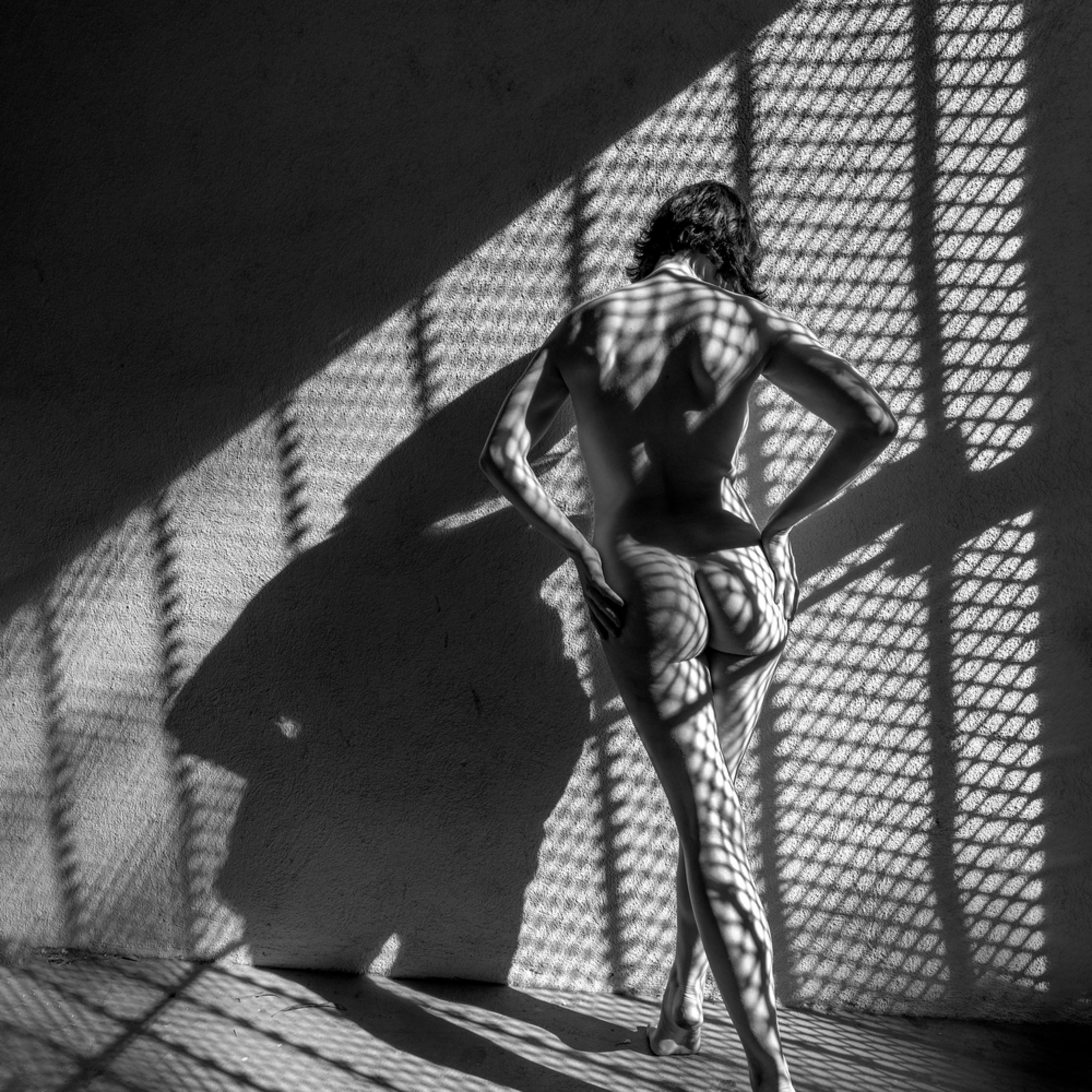 Olive nude shadows 1 juttmq