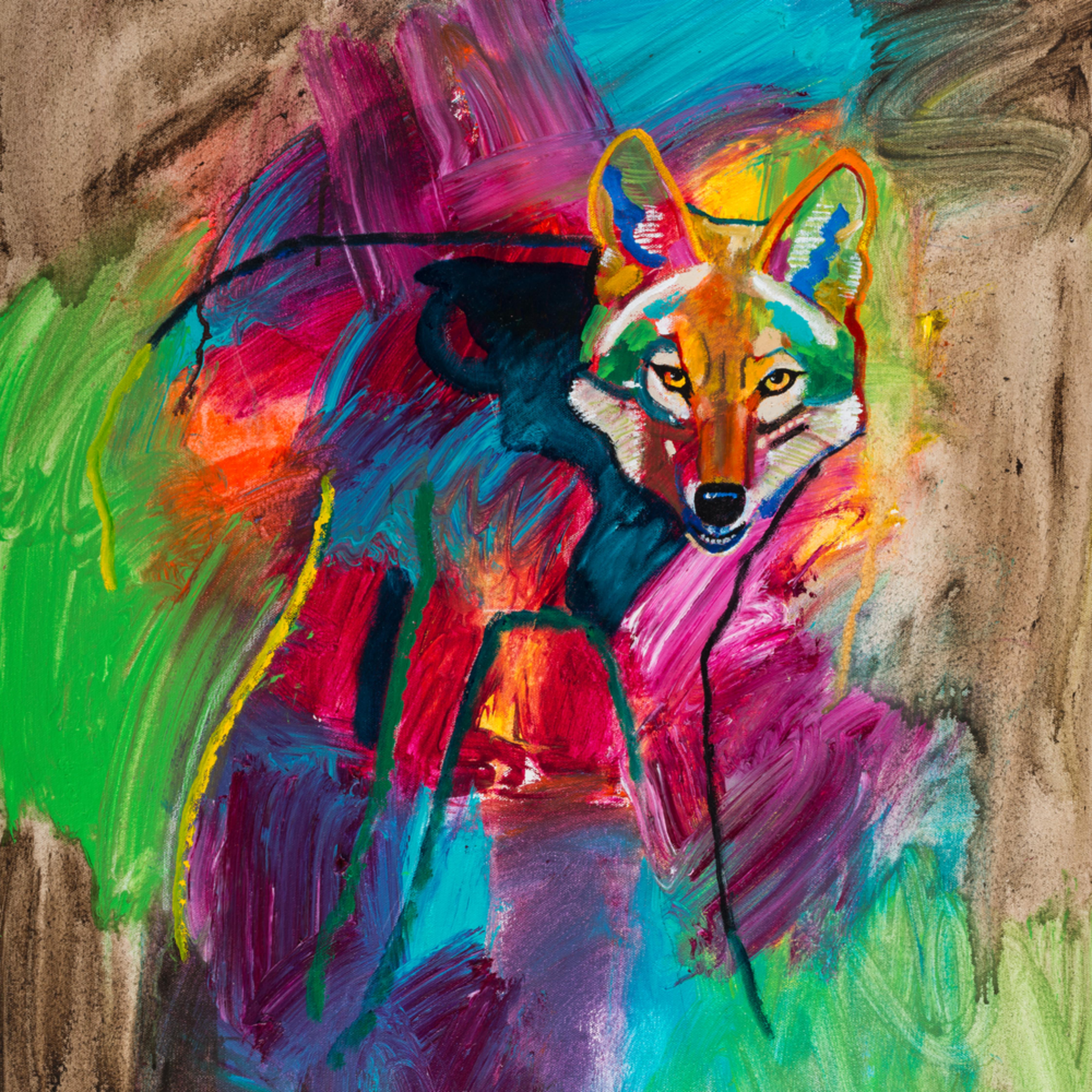 Coyote emerging 004 kylshh