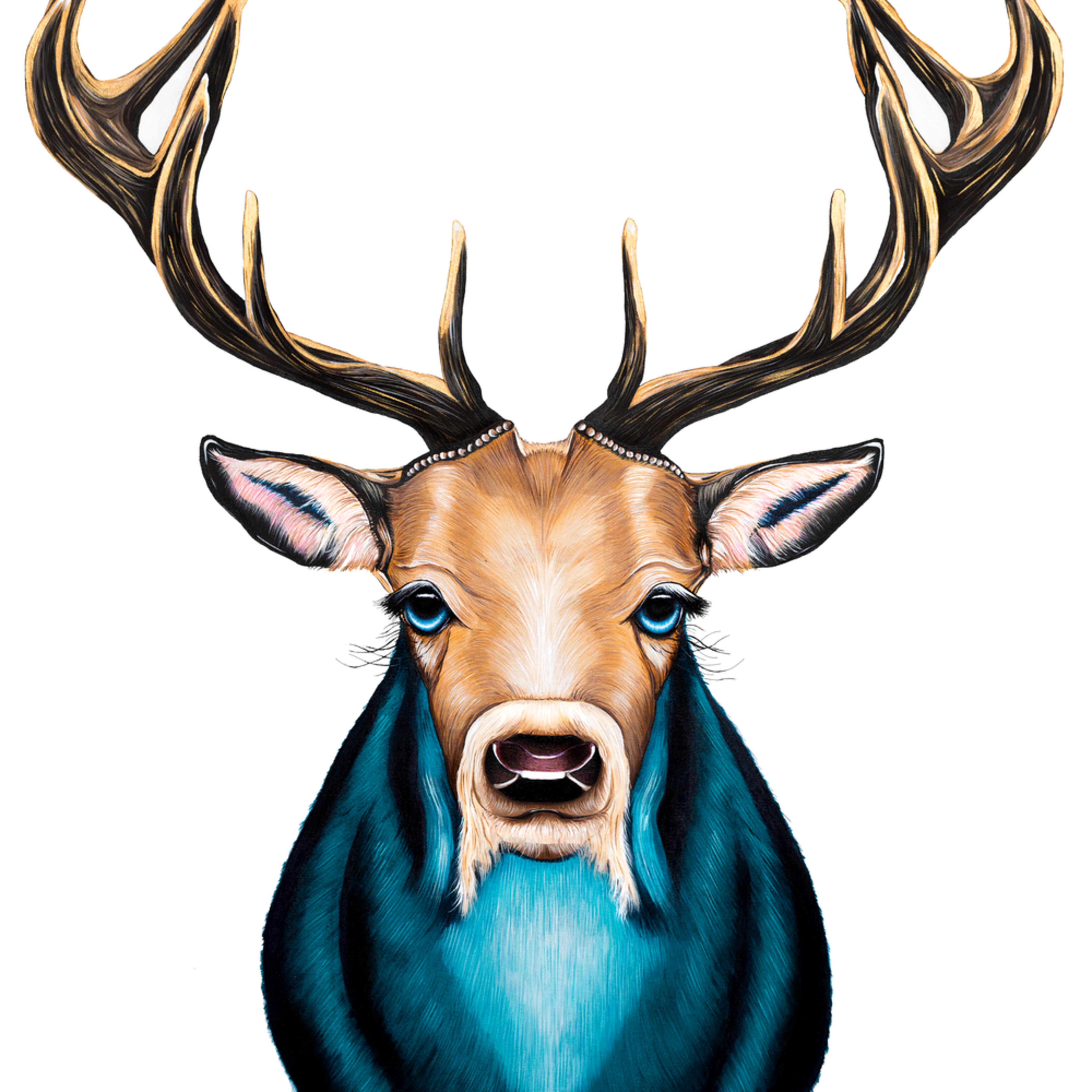 Deer kougts