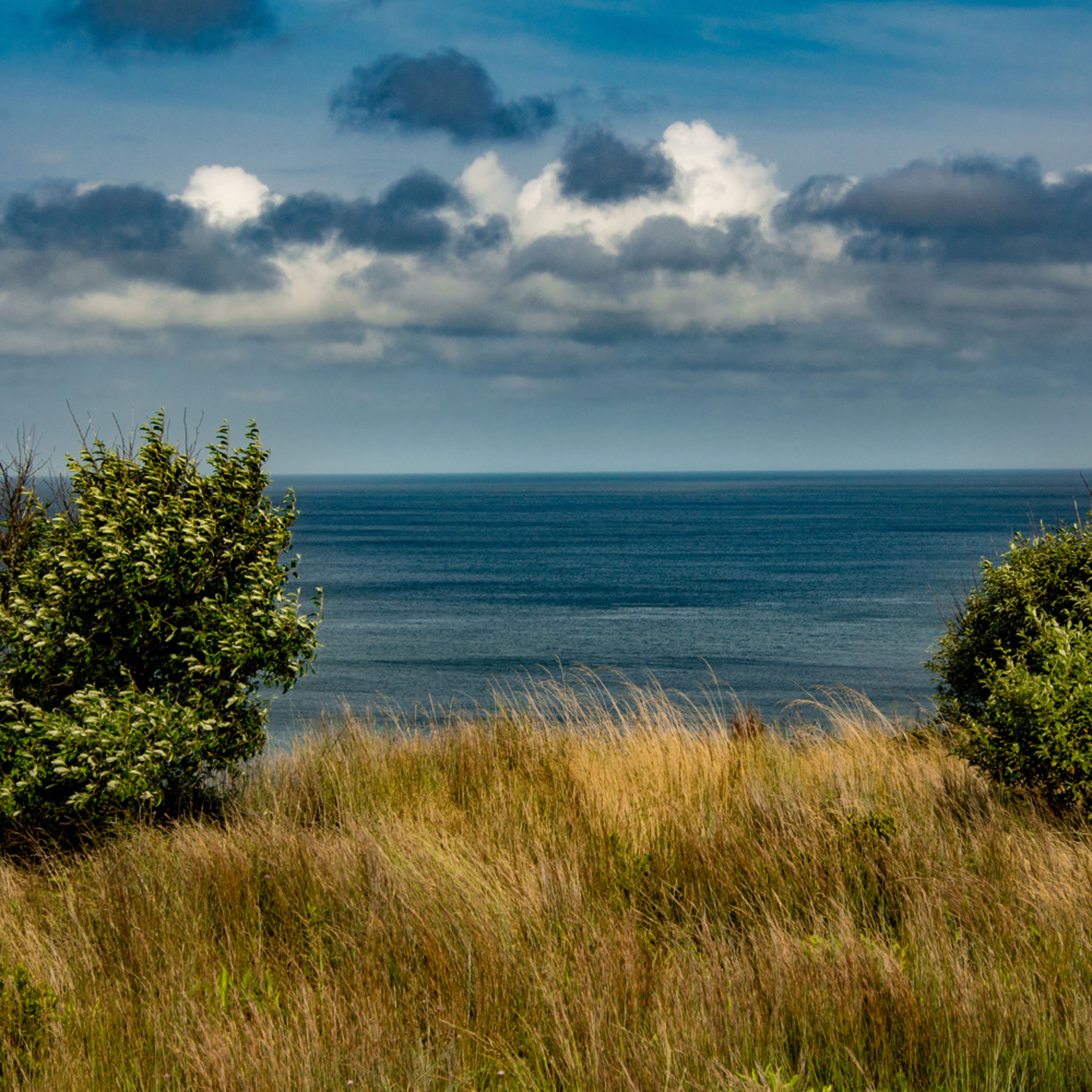 Cape cod 7 2012 1 wylxgk