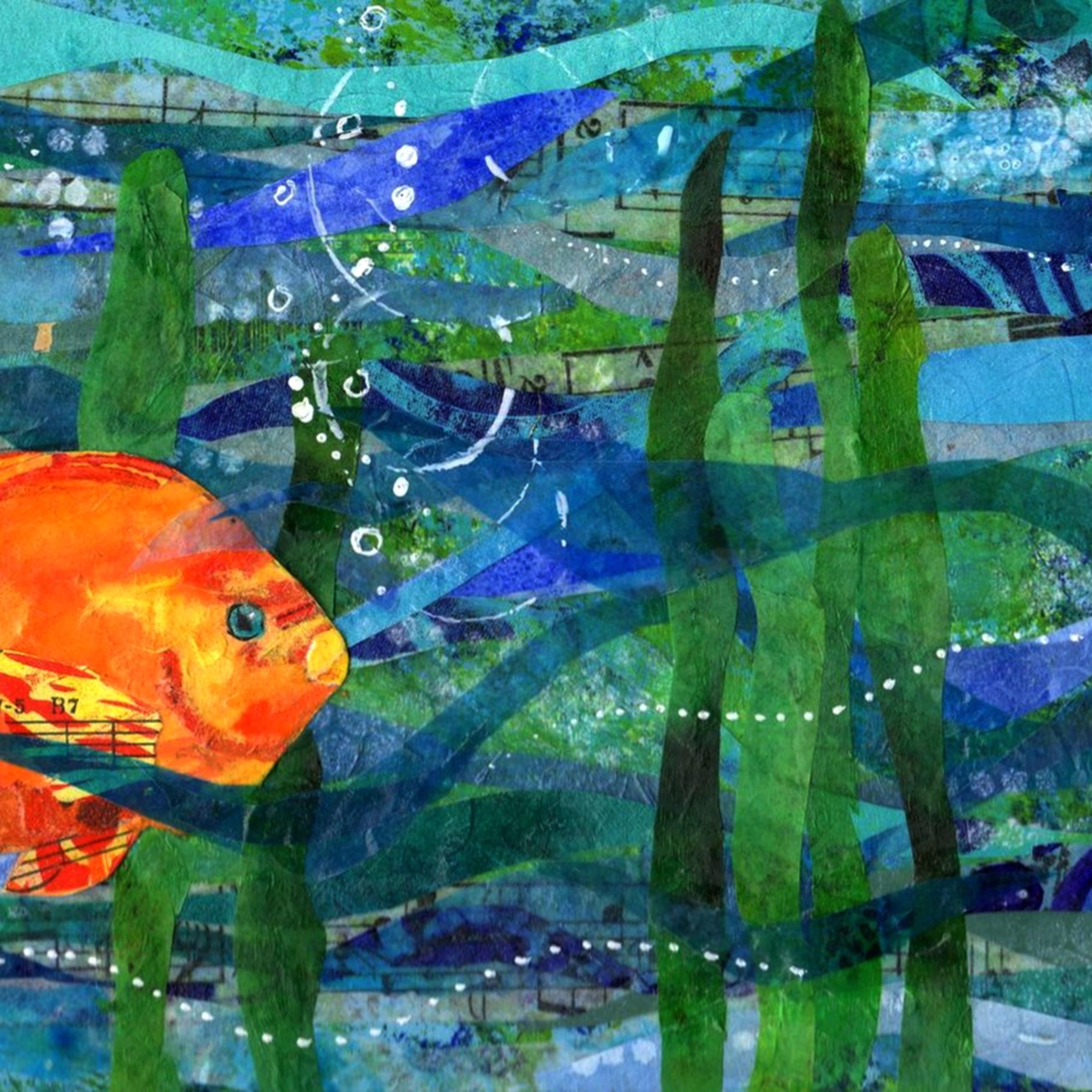 Poppyfish 300 30x60 nhvxfu