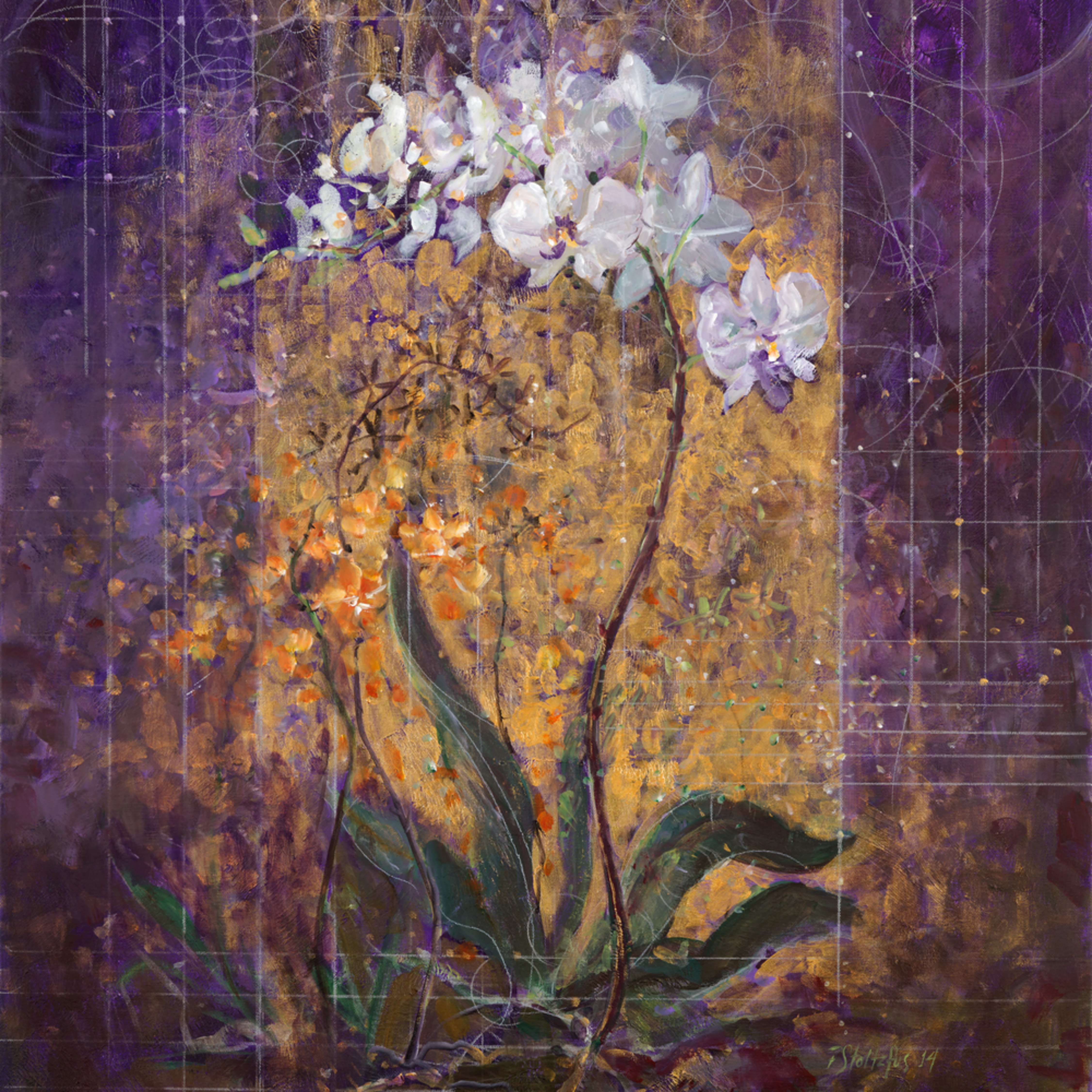 Creation of the orchids mwgi72
