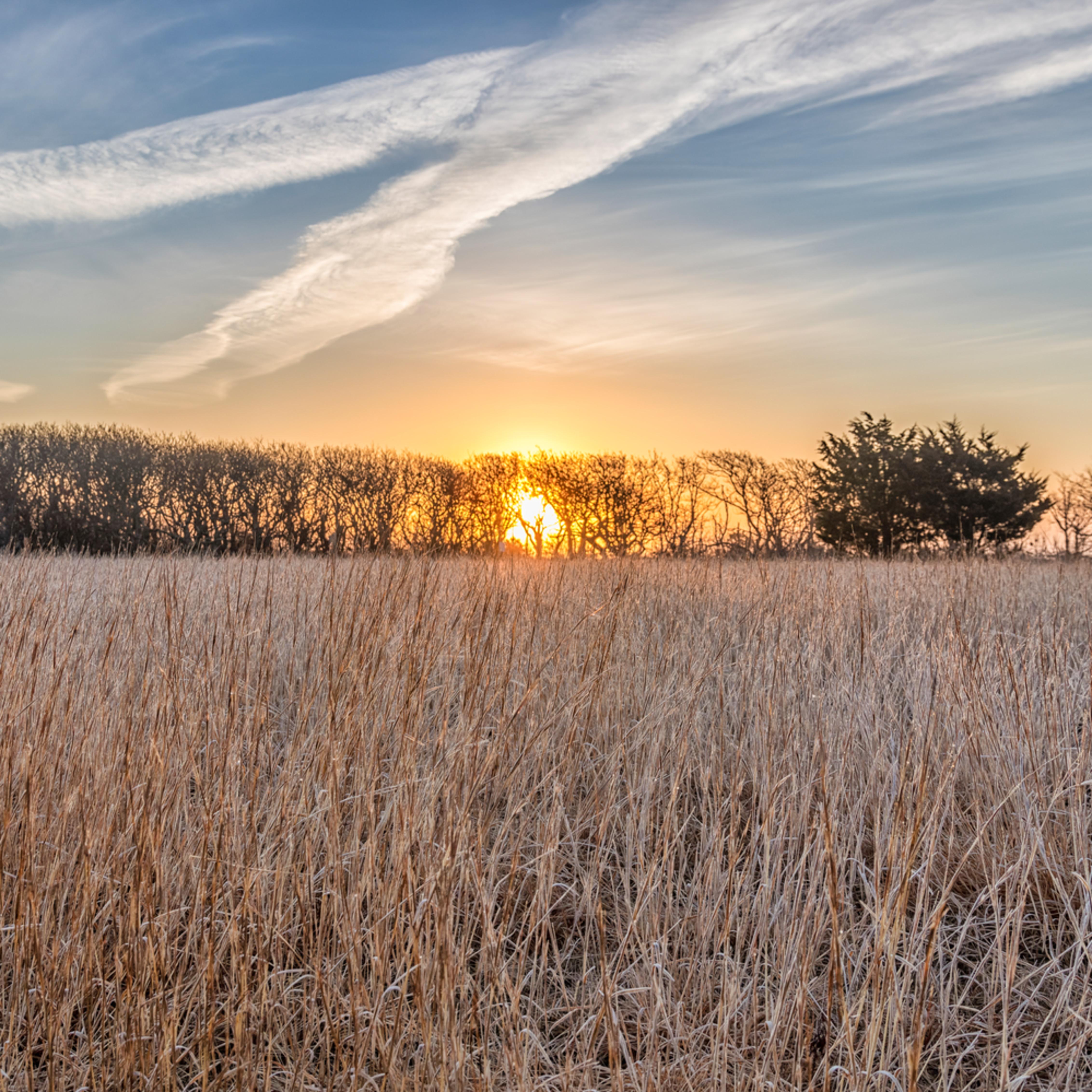 Long point grasses at sunrise 1 ulci7f