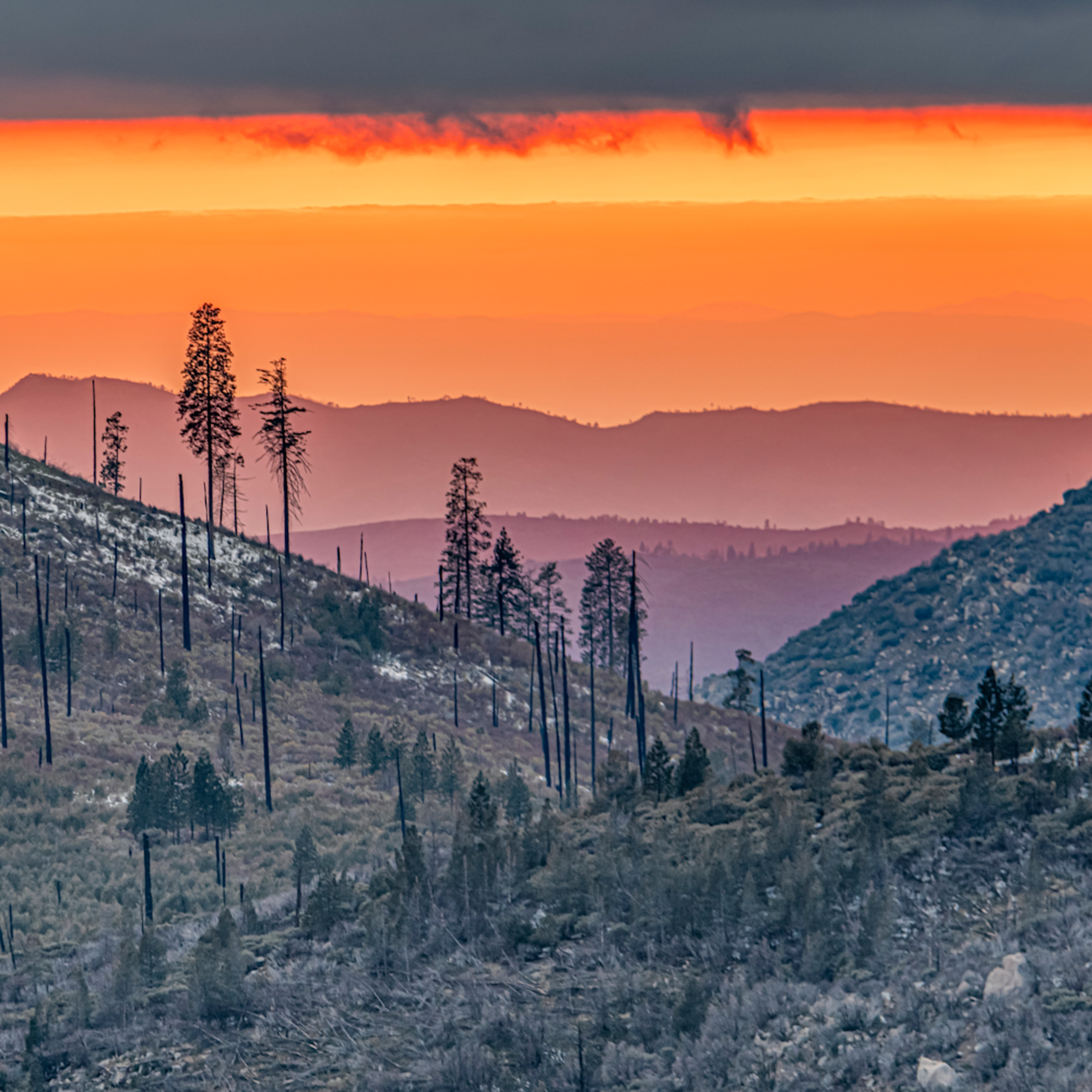 Yosemite survival rmuvff