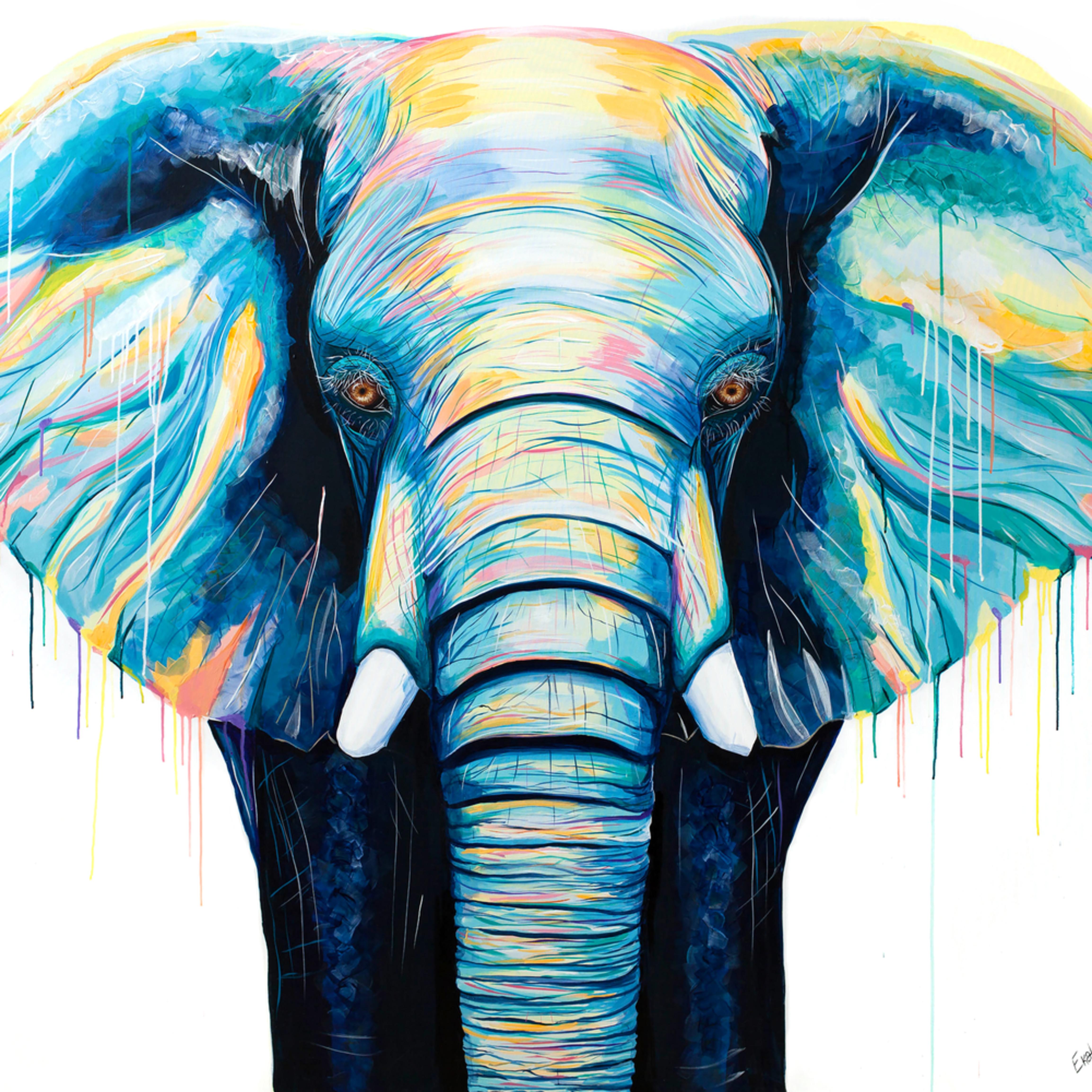 Elephant kadmna