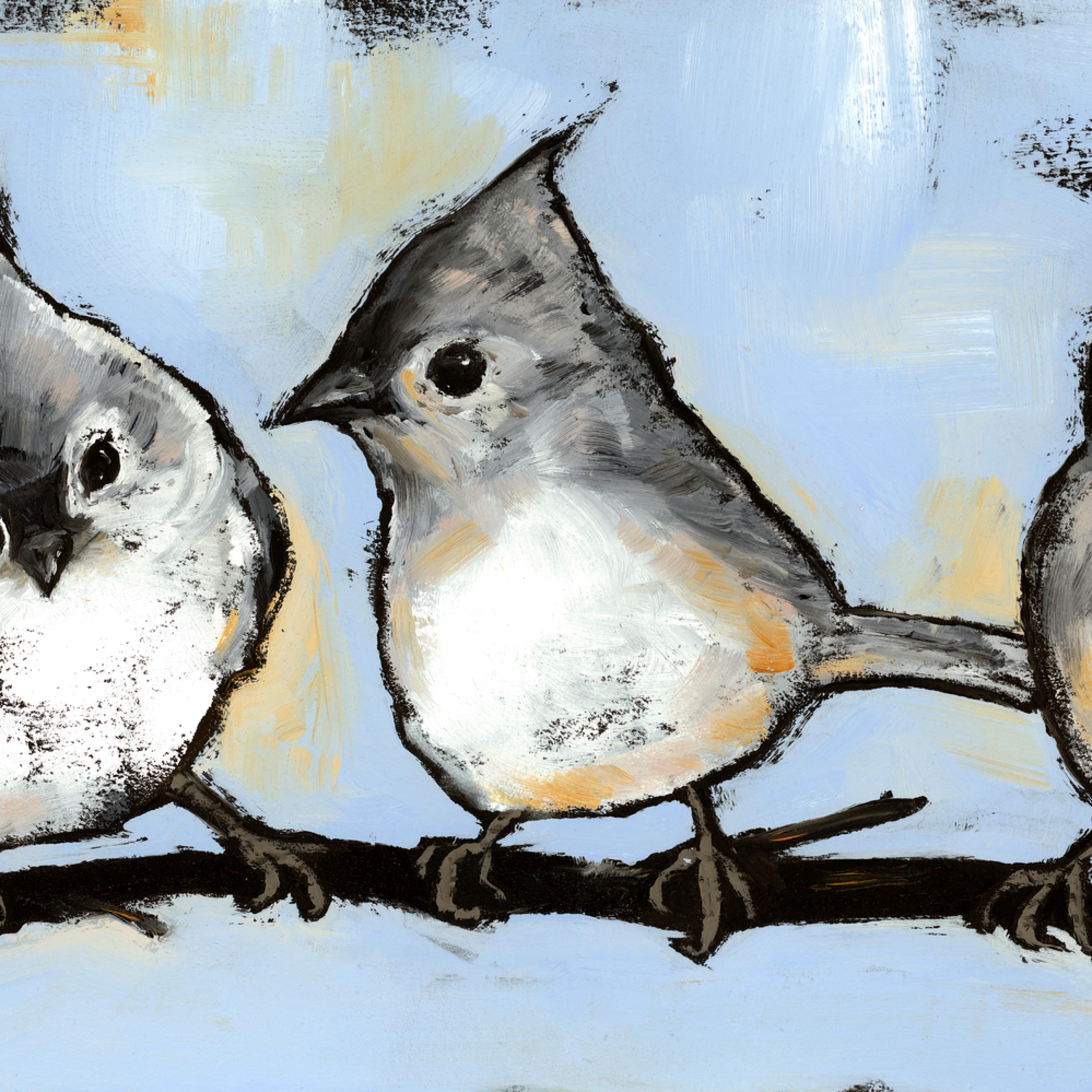 Titmouse trio wallace ptui2f