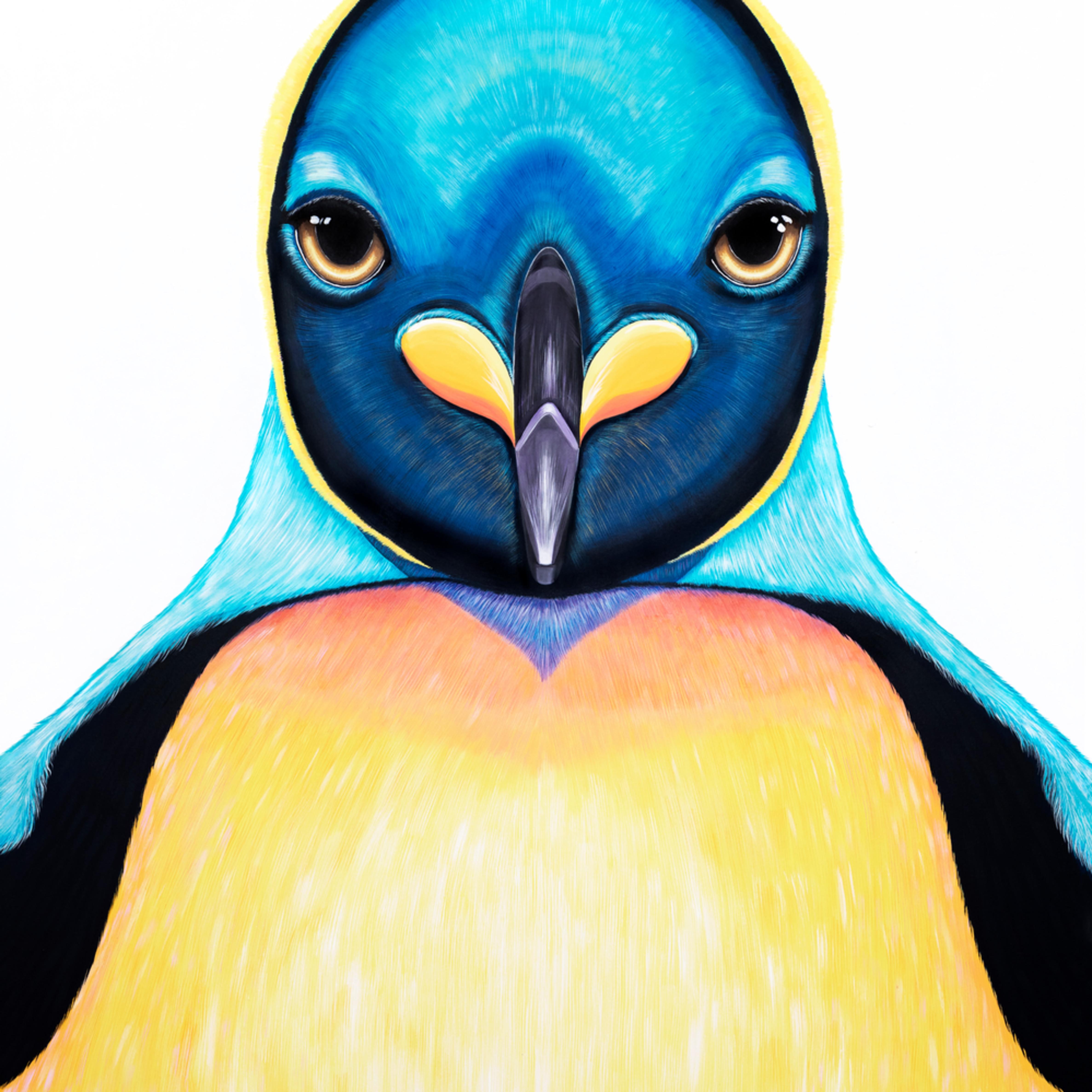 Penguin yjpjpy