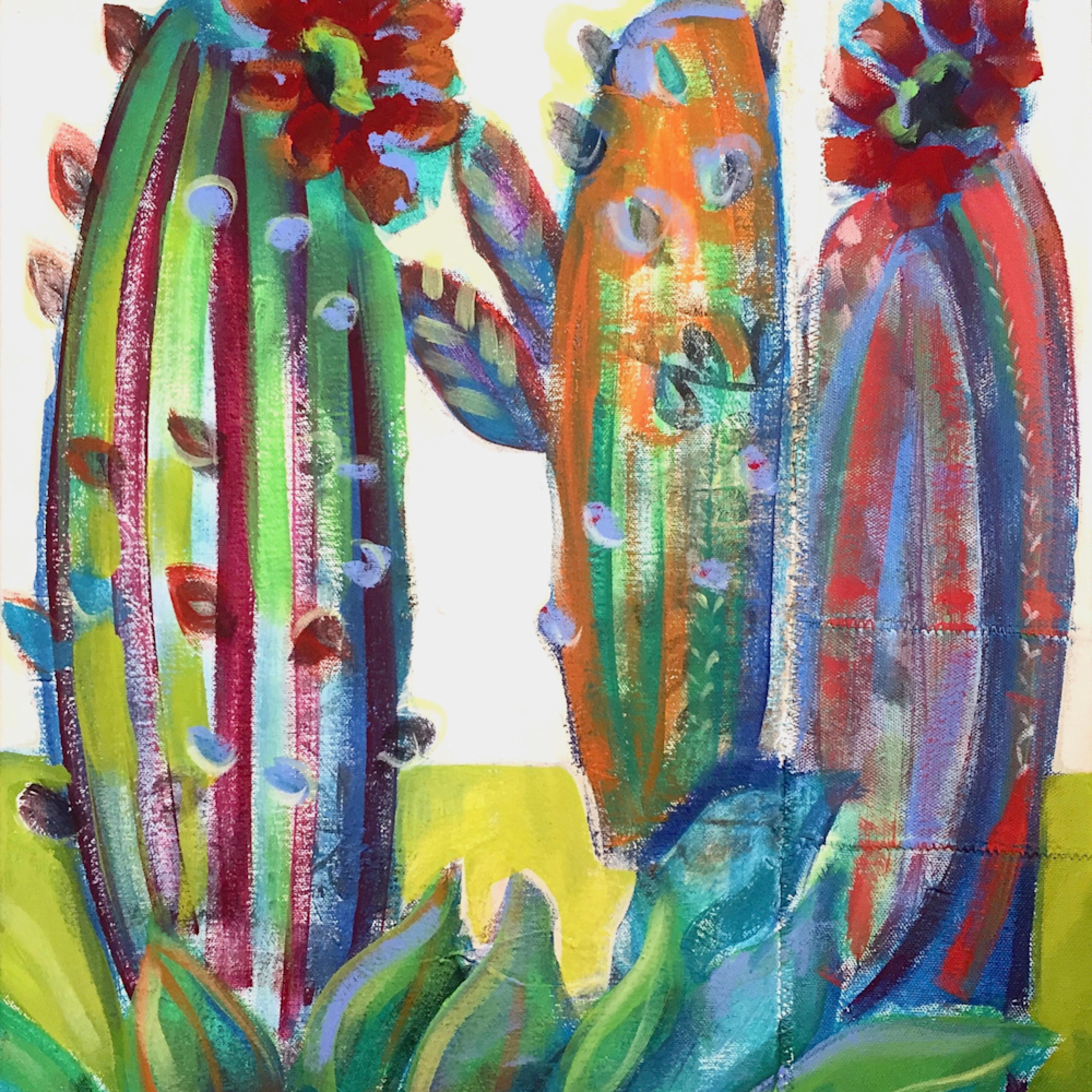 Desert cactus j03zuu